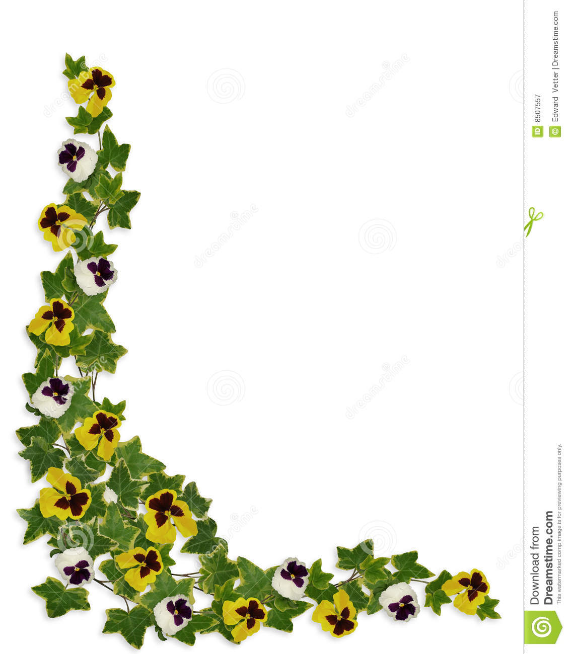 Ivy And Pansies Floral Border Royalty Free Stock