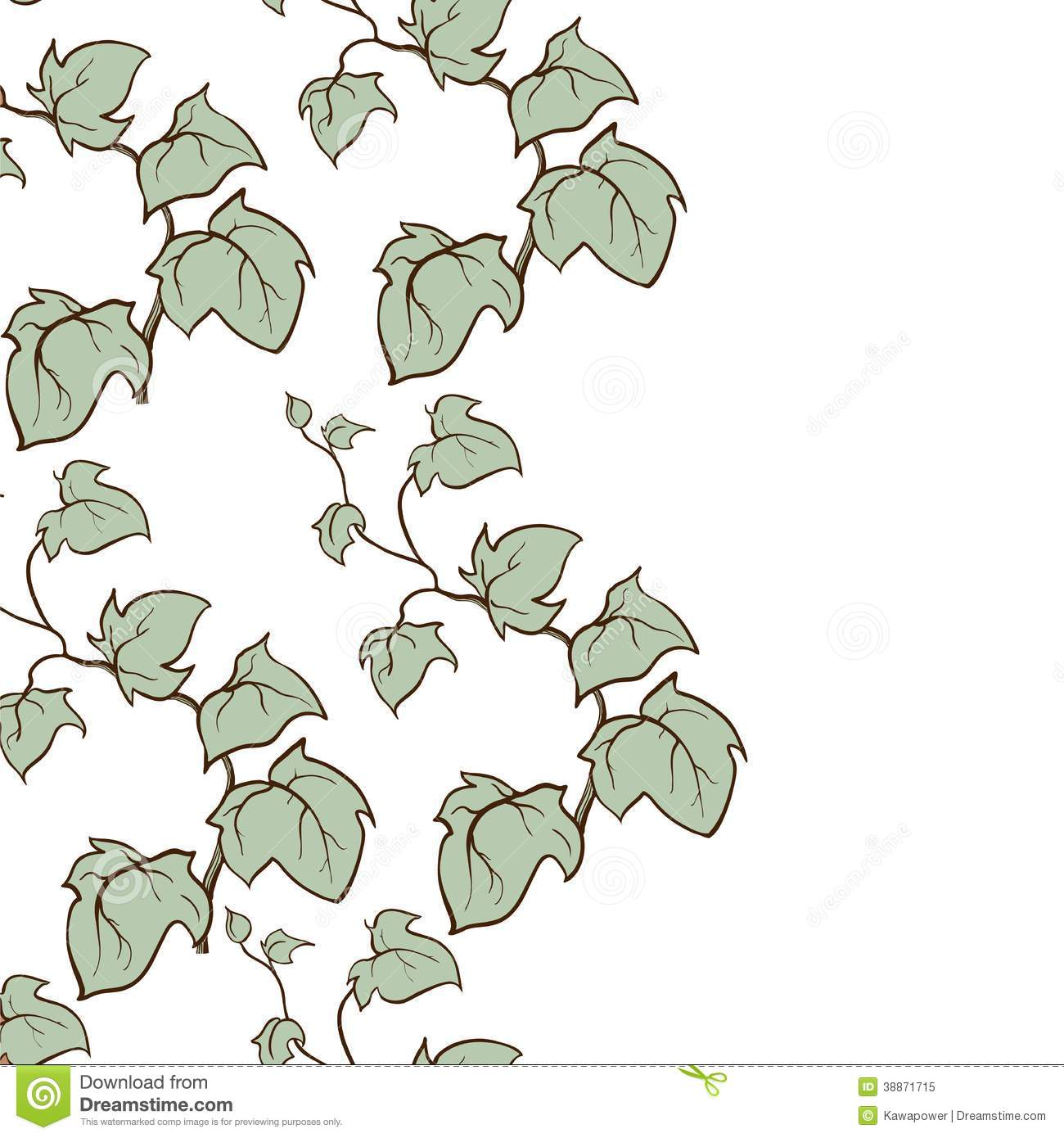 Ivy Vector Hand Drawn Vertical Seamless Pattern Stock