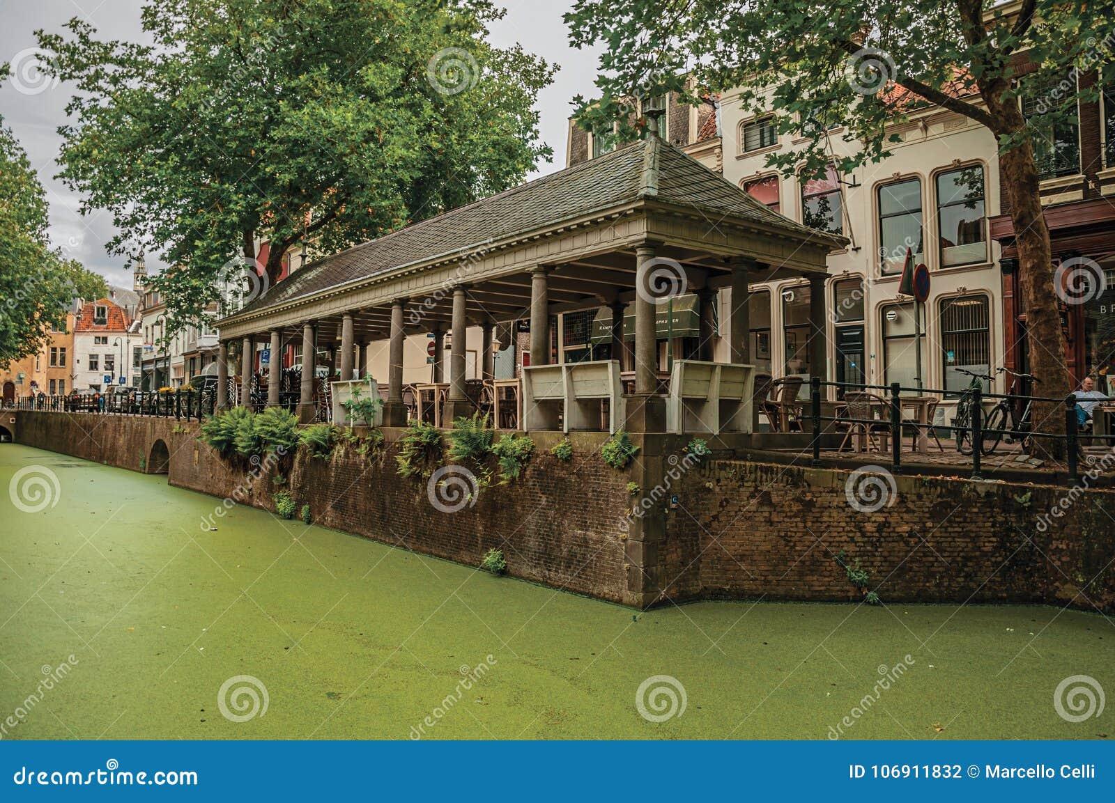 Izolujący kanał z nadwodnymi zielonawymi roślinami, drzewami i budynkami przy Gouda,