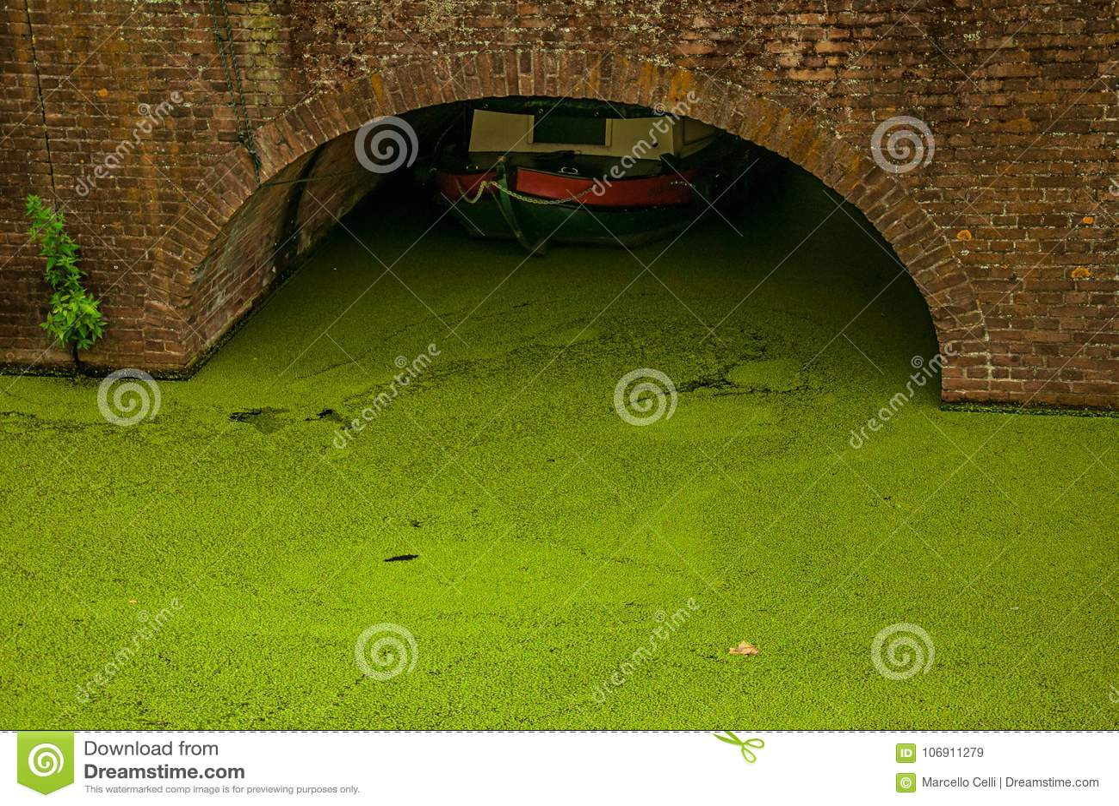Izolujący kanał z nadwodnymi zielonawymi roślinami i łodzią pod łukowatym mostem przy Gouda