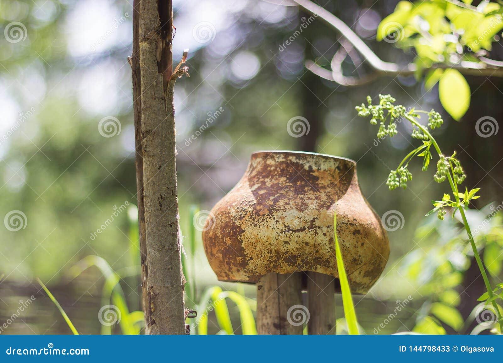 Järnkruka på staketet