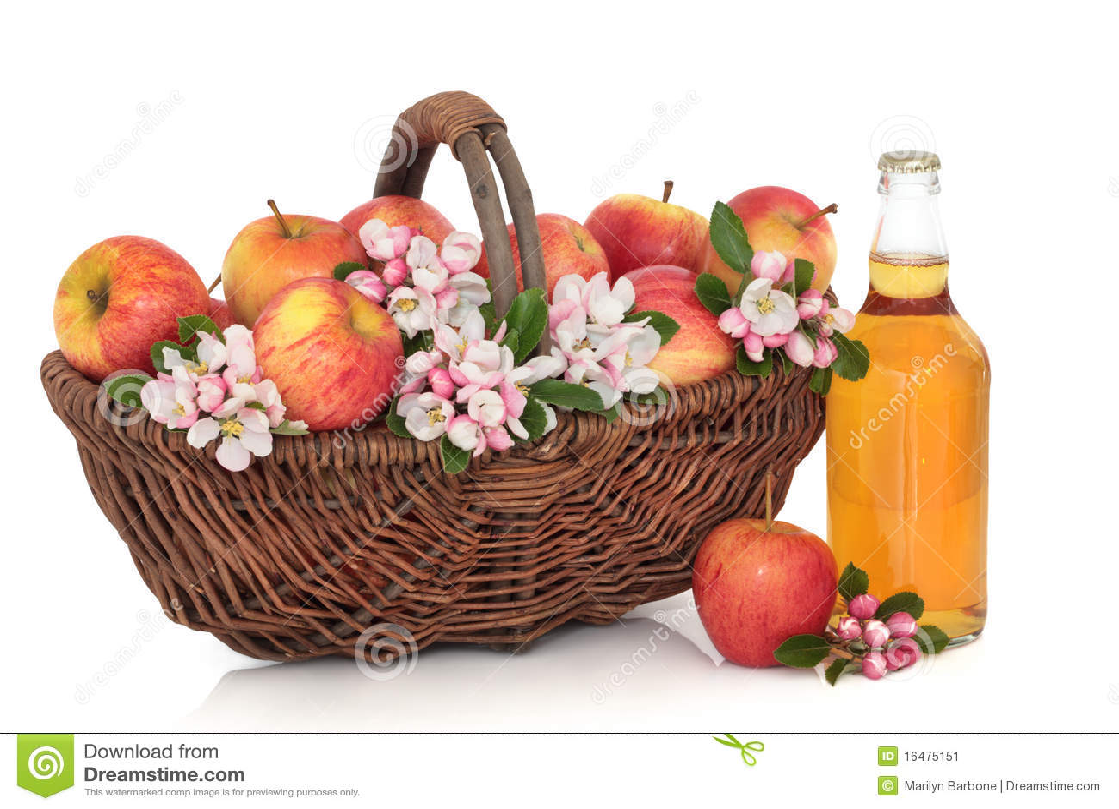 Jabłek okwitnięcia cydru kwiat
