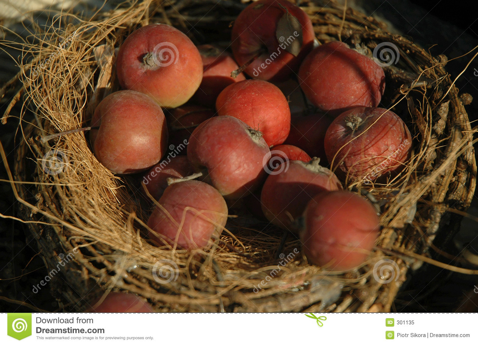 Jabłka rustical