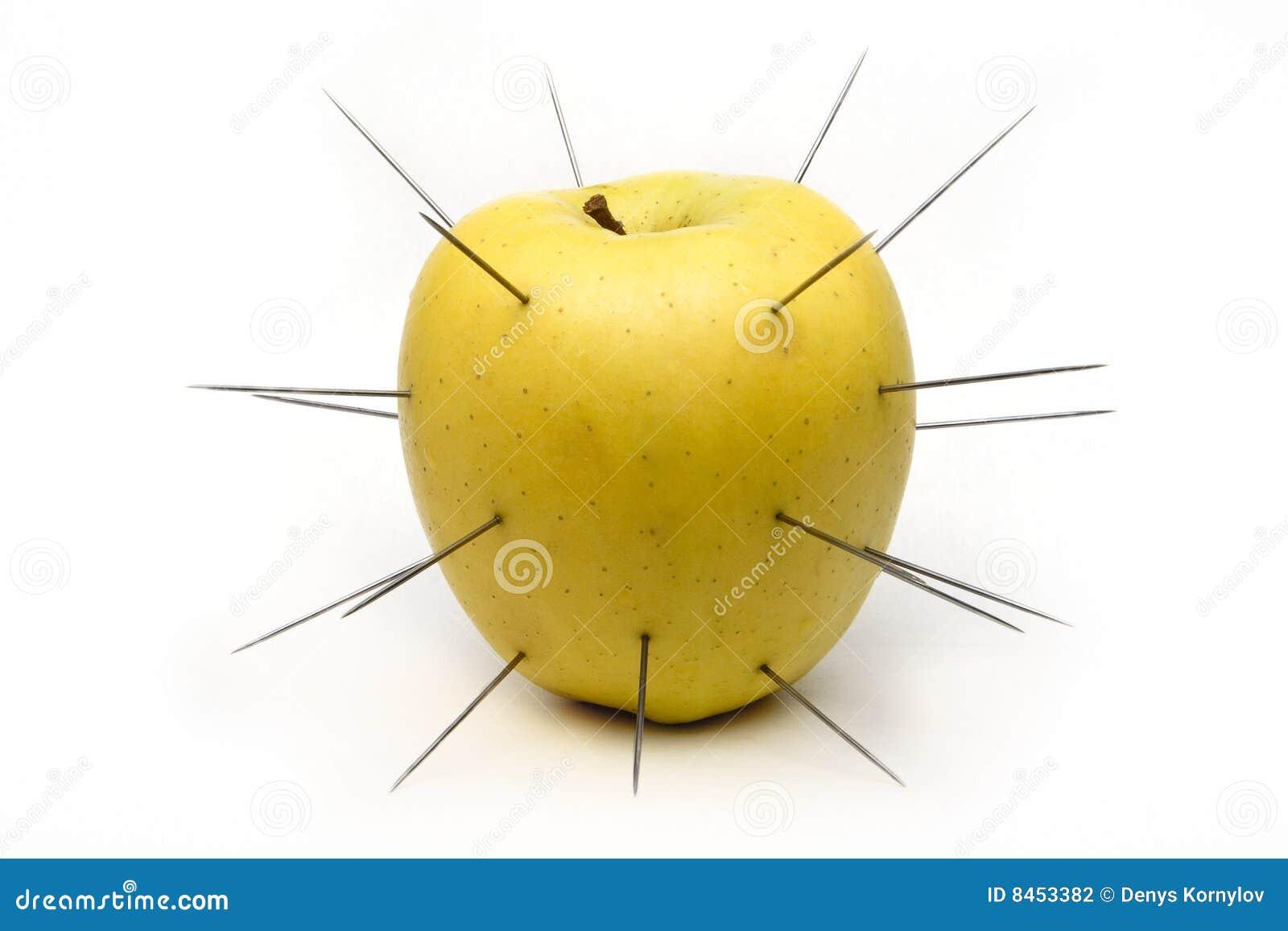 Jabłko gwożdżący biel