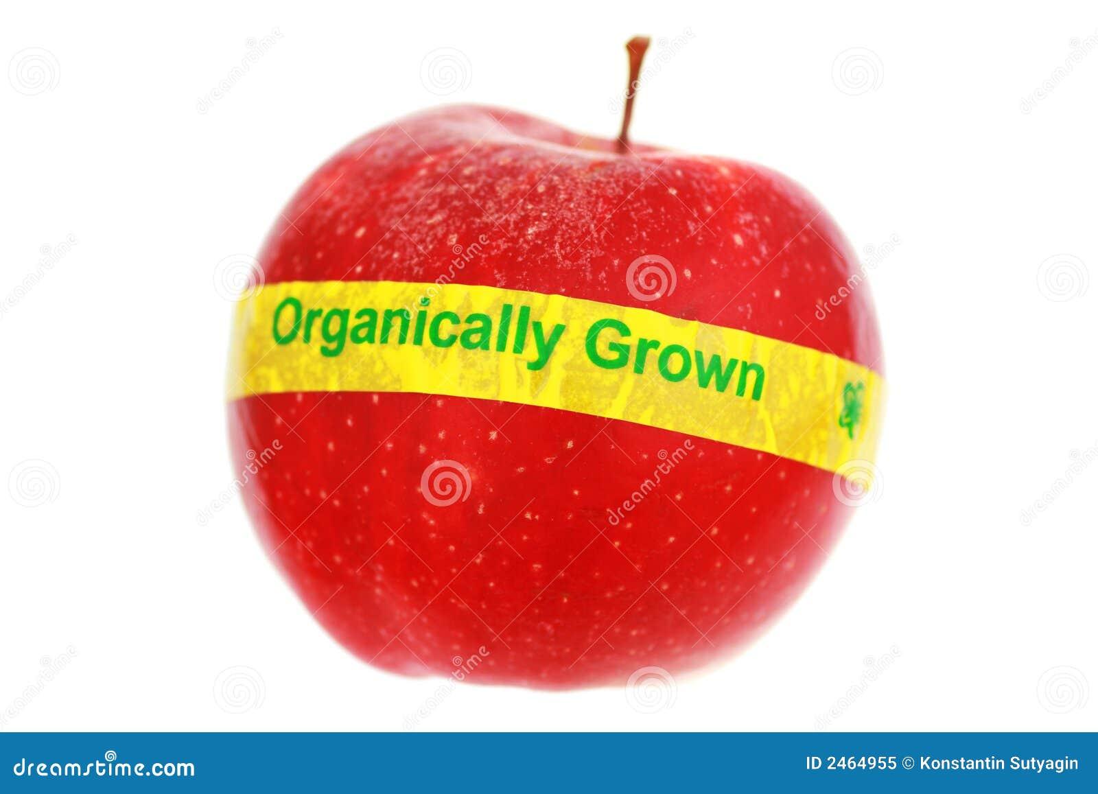 Jabłko organiczne