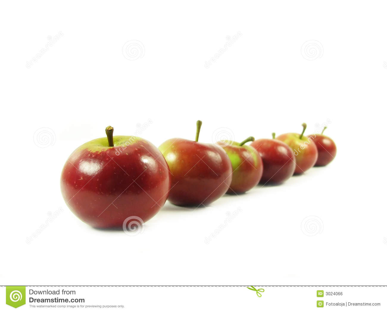 Jabłko rządu czerwony white