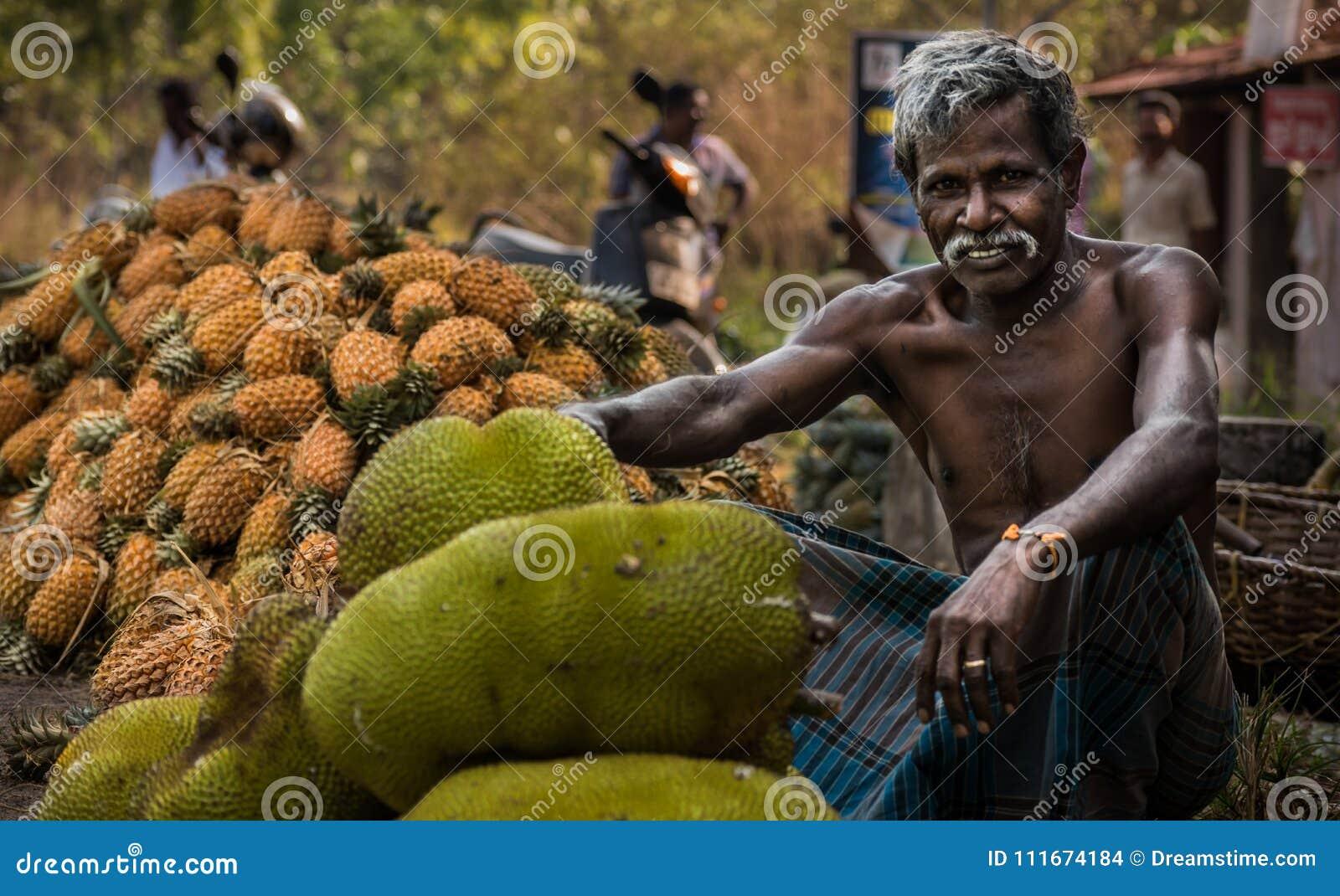 Jackfruit zbiera w Kerala