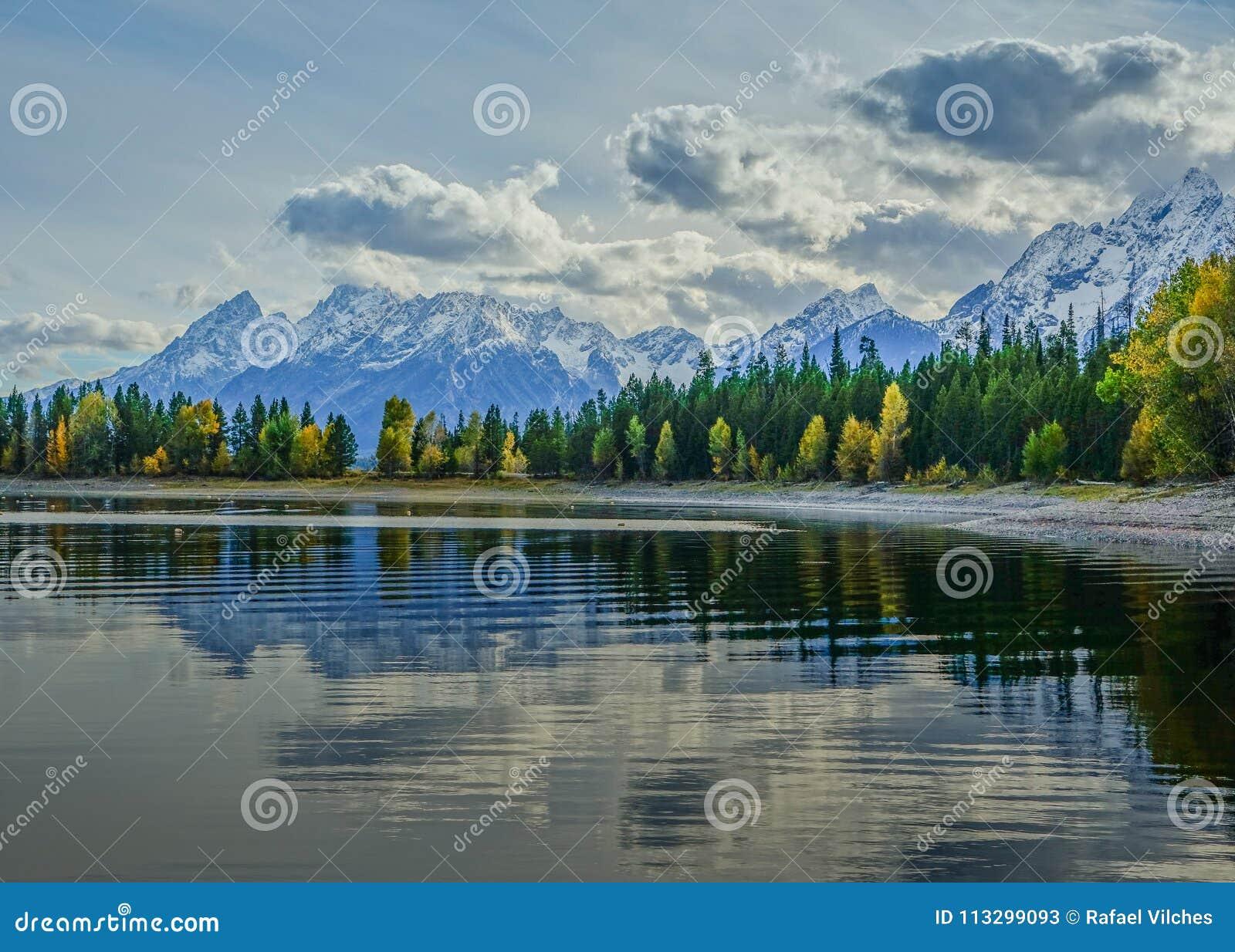 Jackson湖在有反射的大蒂顿国家公园在湖的树和在backg的山脉看法
