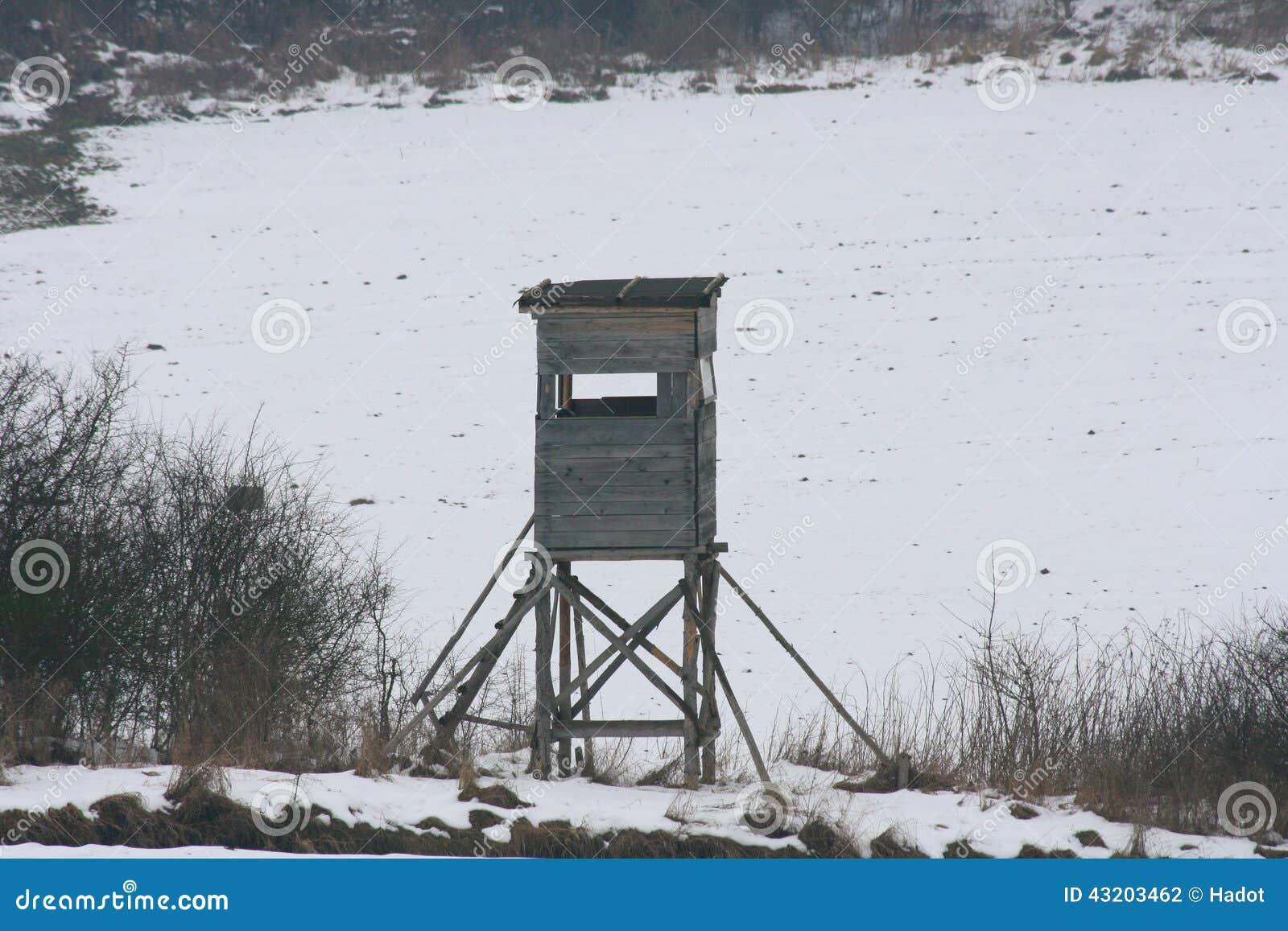 Download Jaga sittpinnen arkivfoto. Bild av natur, jakt, vinter - 43203462