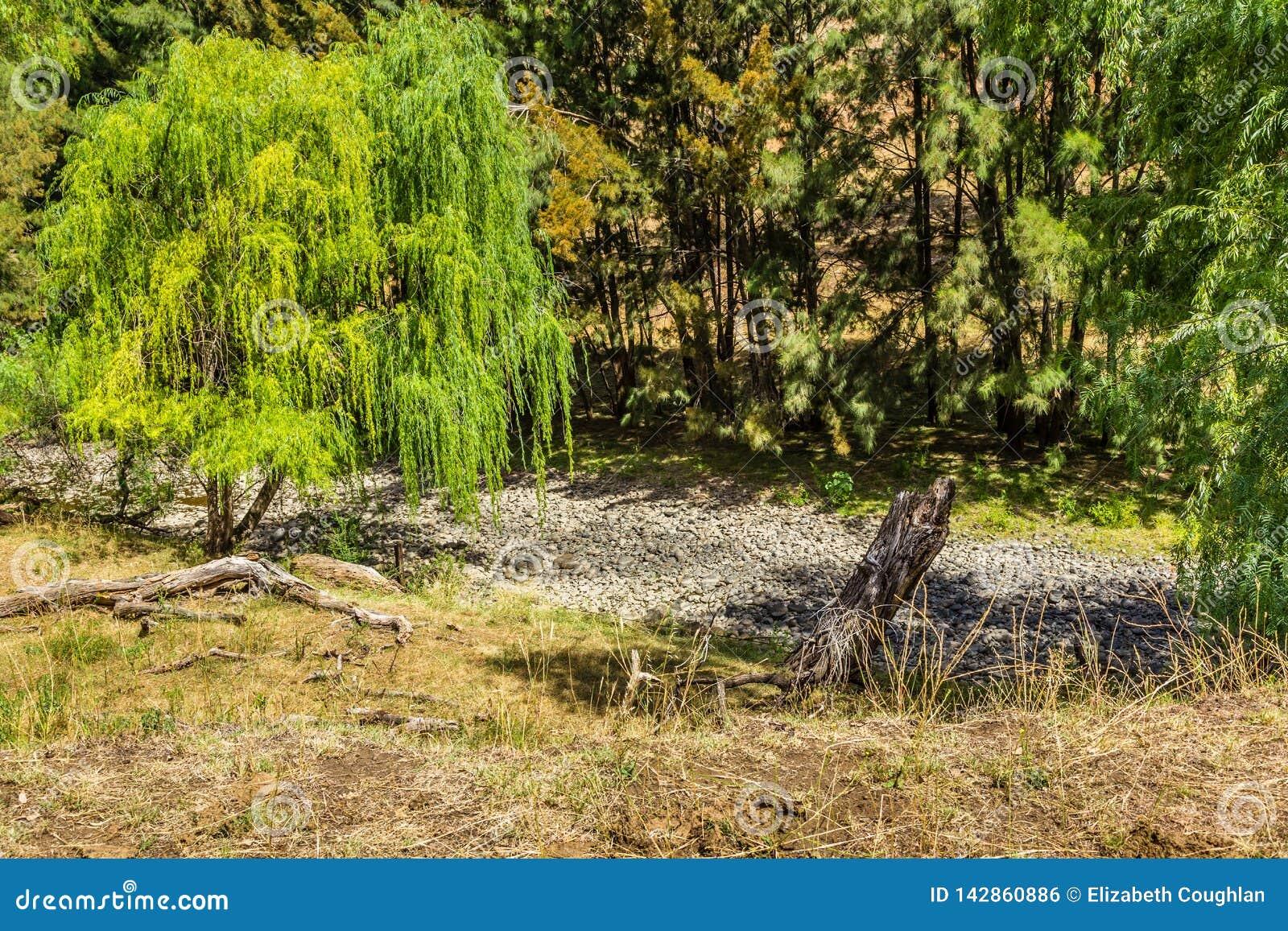Jagersrivier, Hogere Jager, NSW, Australië