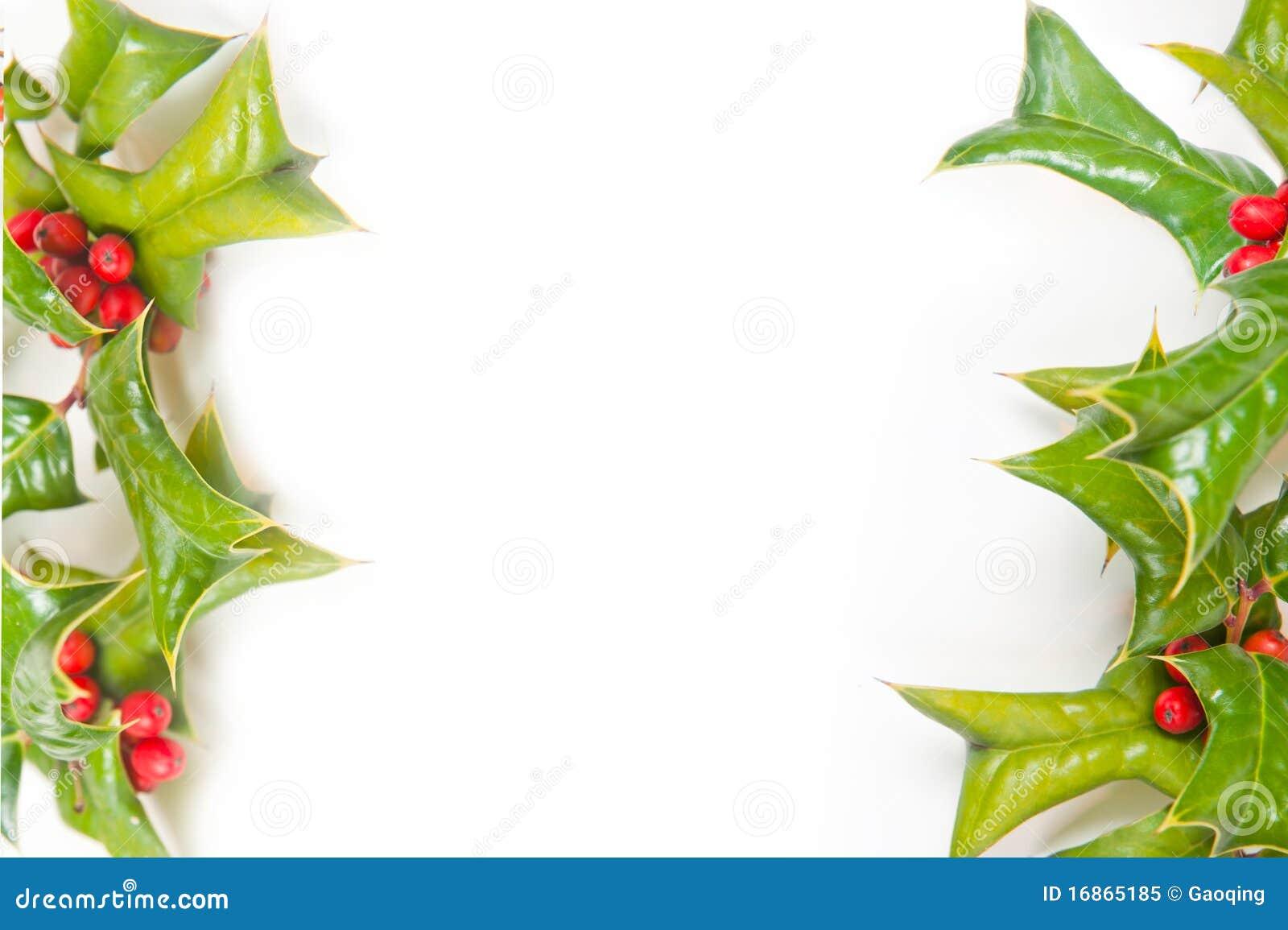 Jagodowej bożych narodzeń struktury zieleni uświęcony isolate
