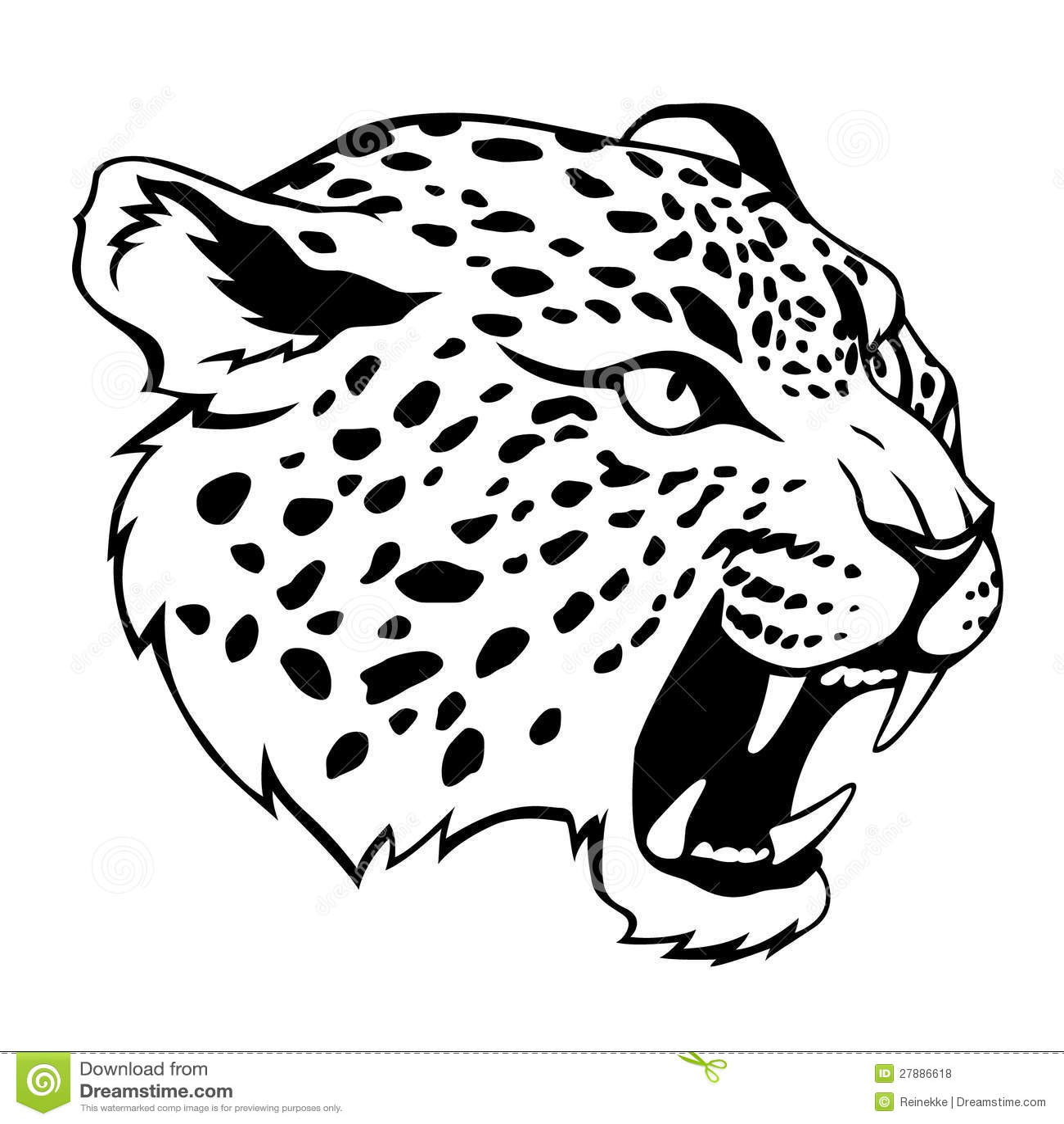Jaguar Face Clip Art: Jaguar Head Royalty Free Stock Photos