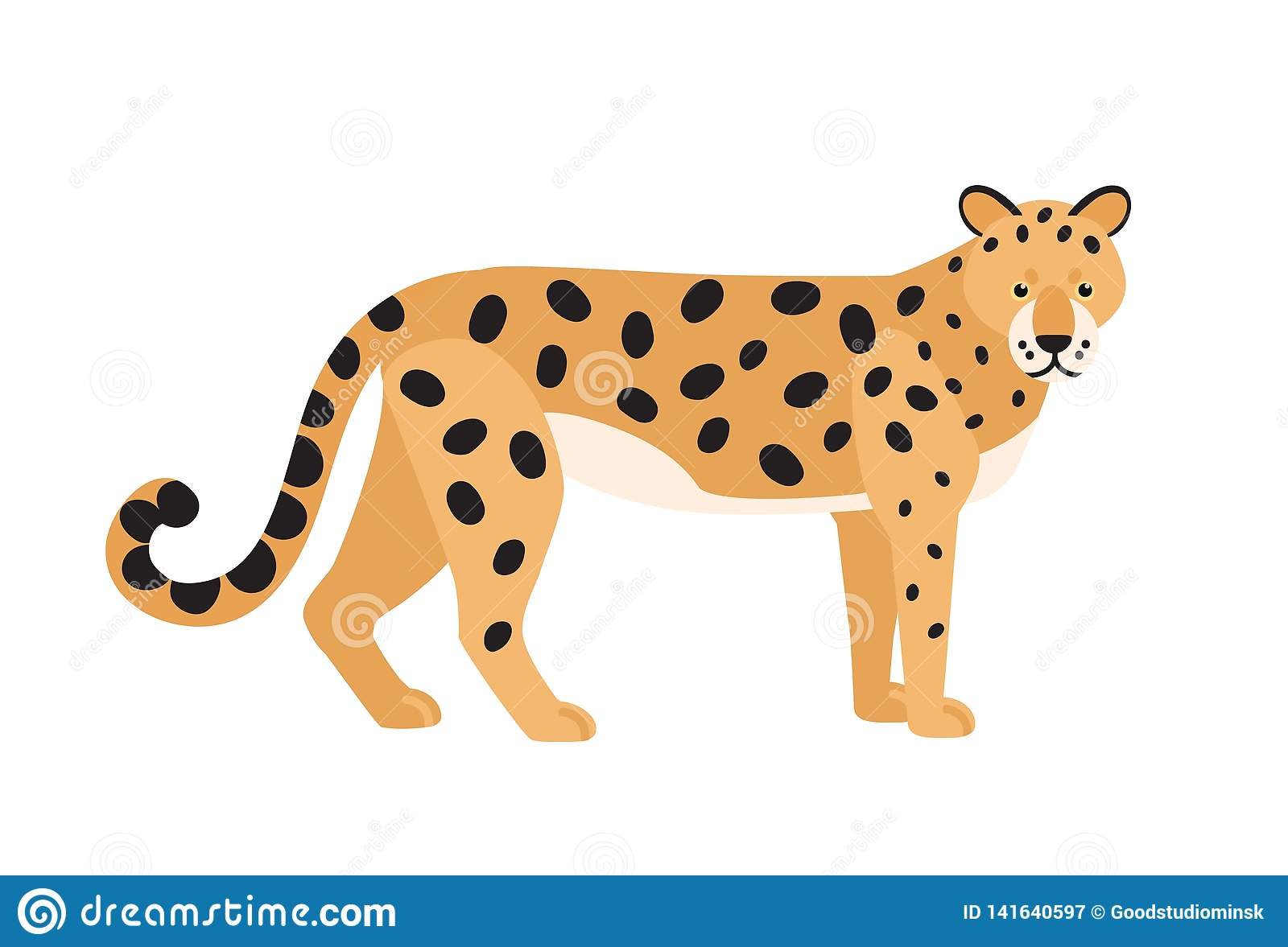 Jaguar isolated on white background. Stunning wild exotic carnivorous animal. Graceful large American wild cat or cute