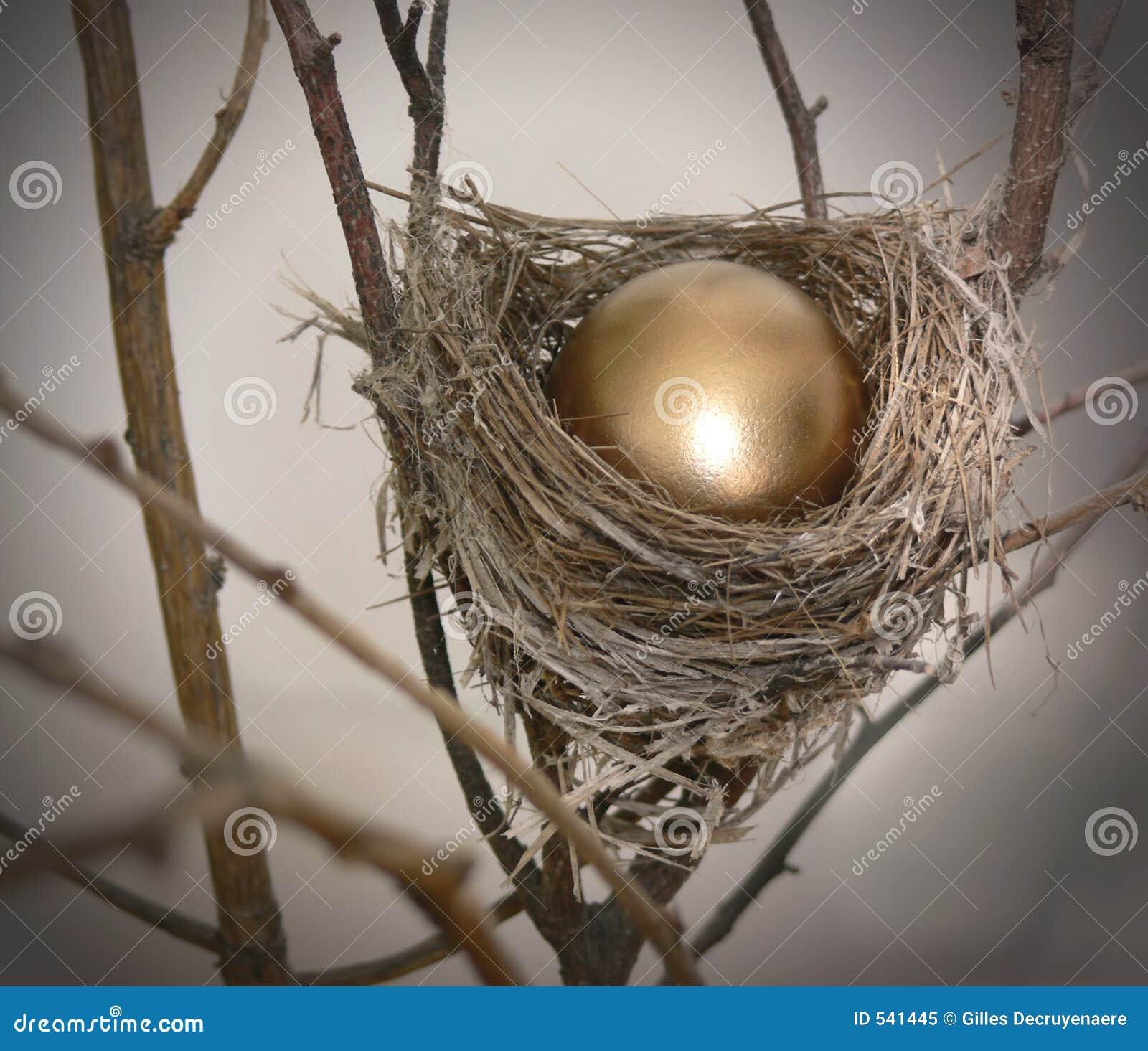 Jajka 2 gniazdo