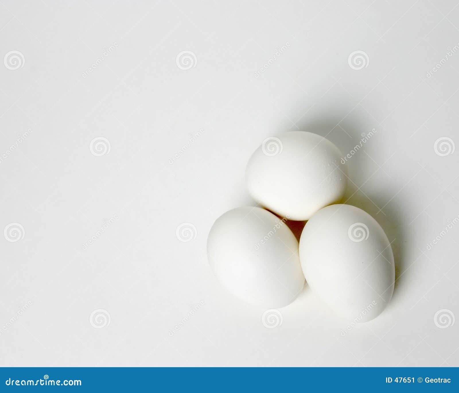 Jajko tercetu white