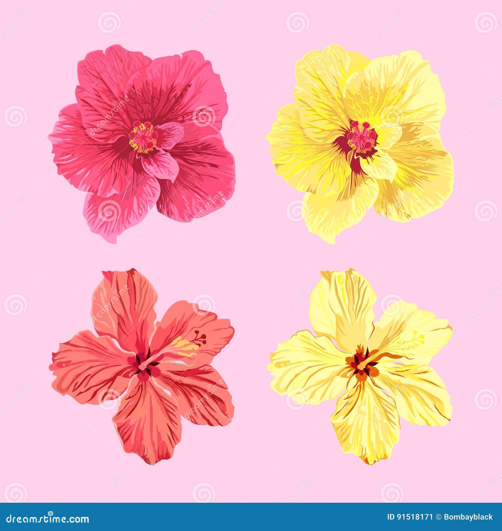 Jamaica flowers set stock illustration illustration of floral download jamaica flowers set stock illustration illustration of floral 91518171 izmirmasajfo