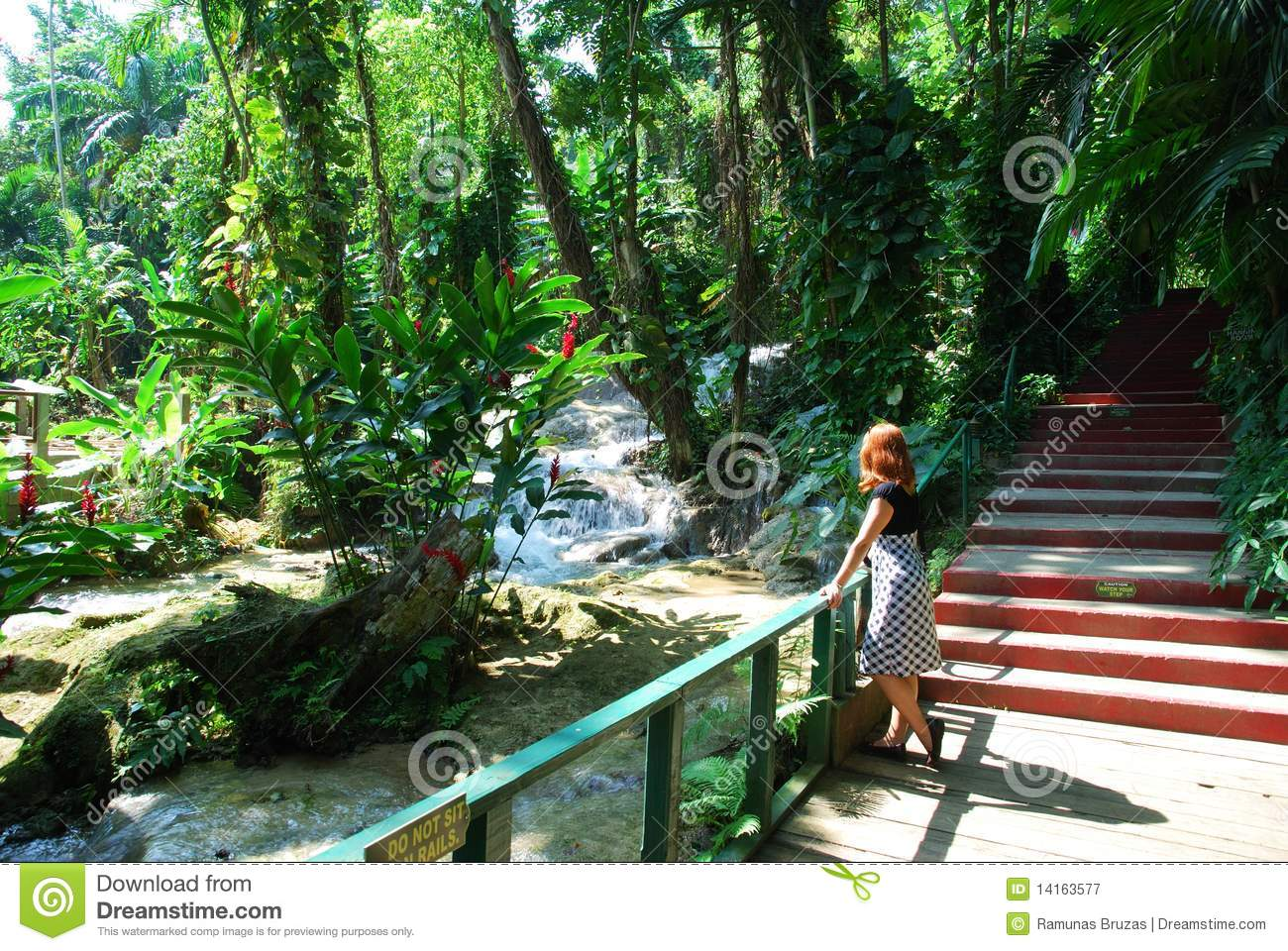 Jamaican Gardens Royalty Free Stock Photography Image