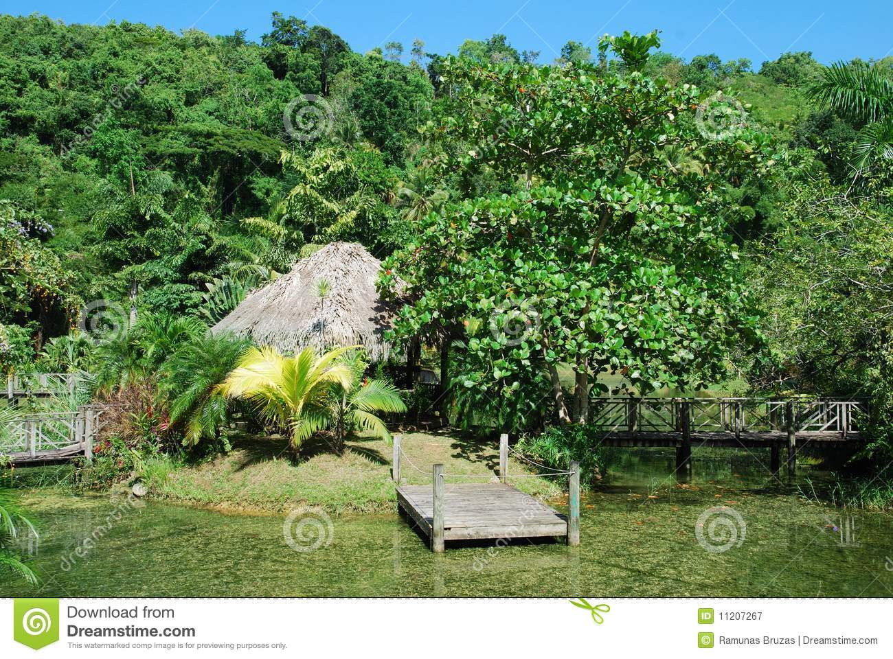 Jamaican nature royalty free stock photography image 11207267