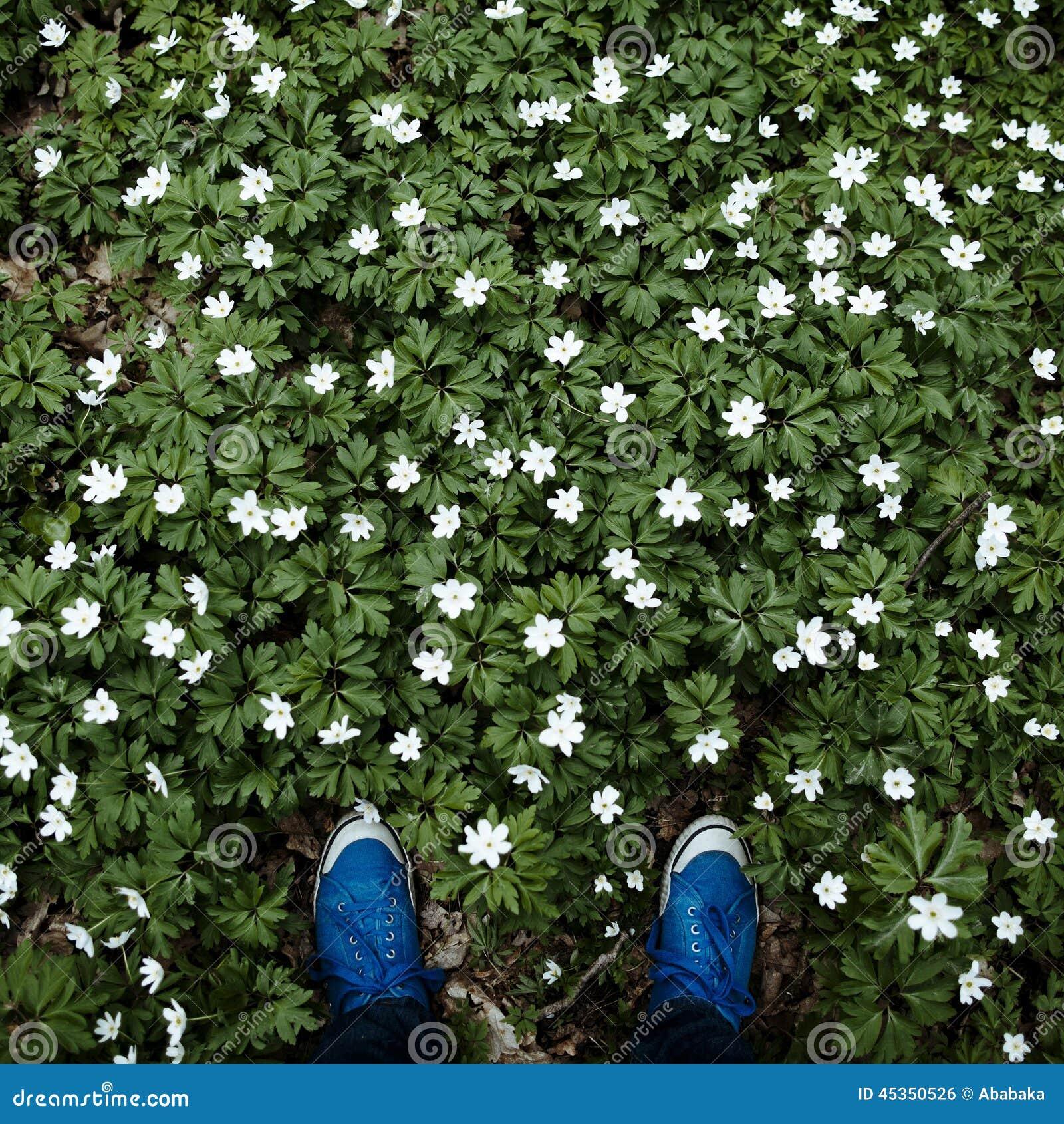 Jambes de hippies dans le pré des fleurs