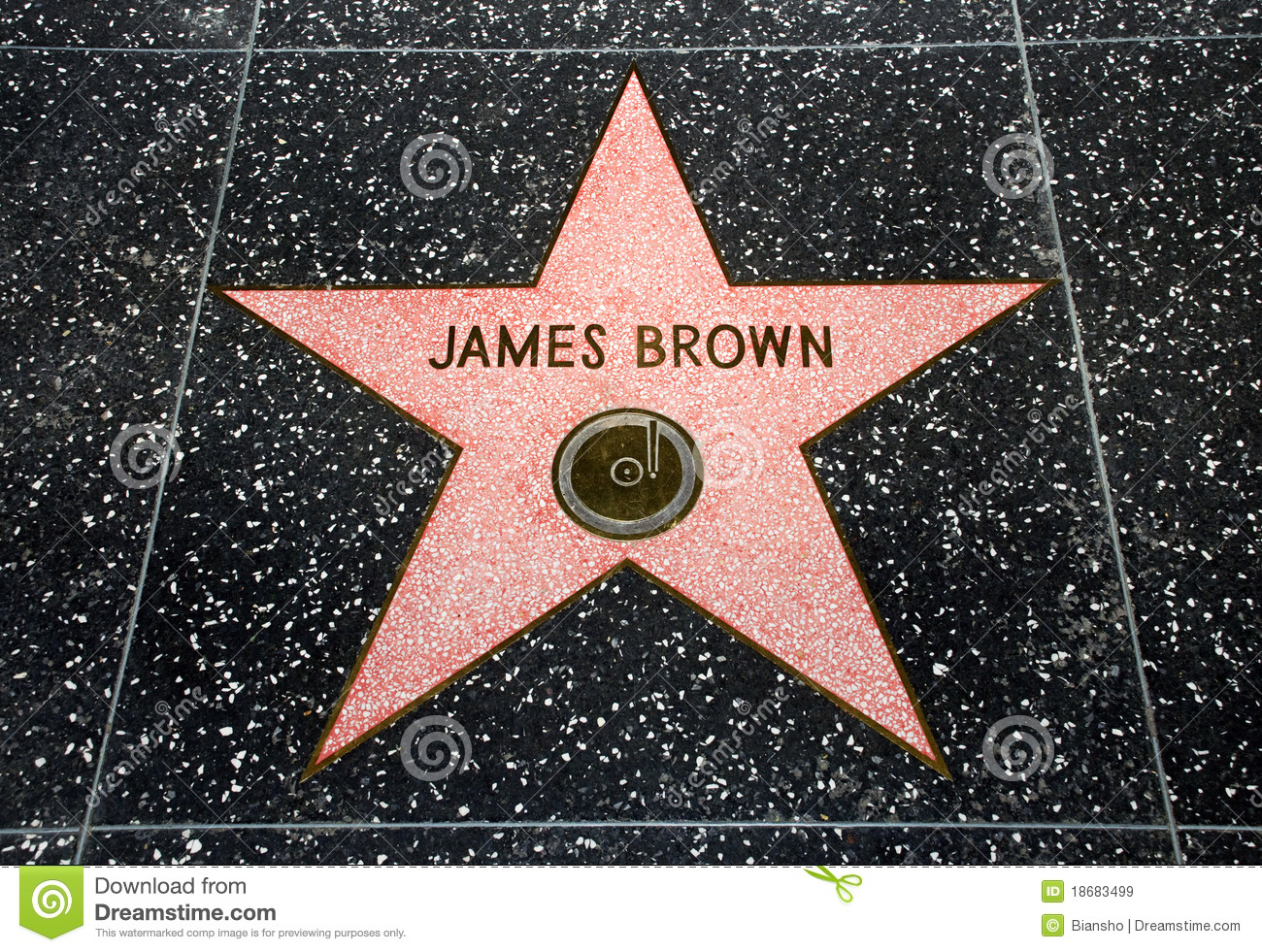 The James Brown star editorial stock image. Image of brown ...