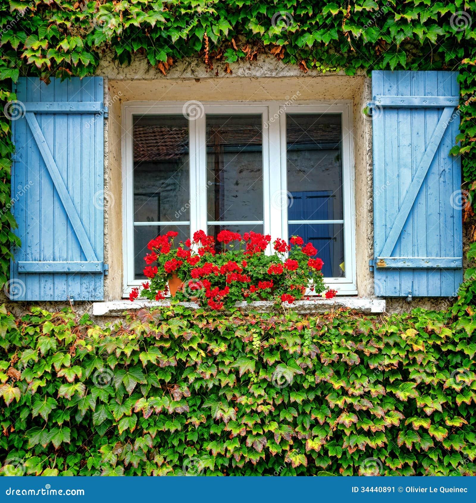 #327712 Janela velha da casa com o plantador vermelho do gerânio e os  1586 Vidros Janelas Vila Velha