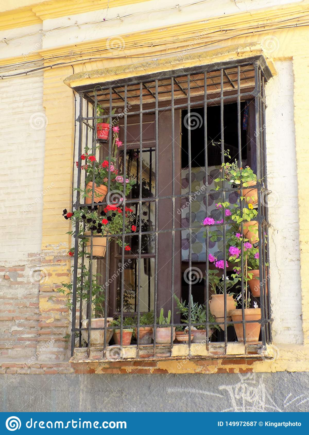 Janela típica com flor-Granada - Andaluzia