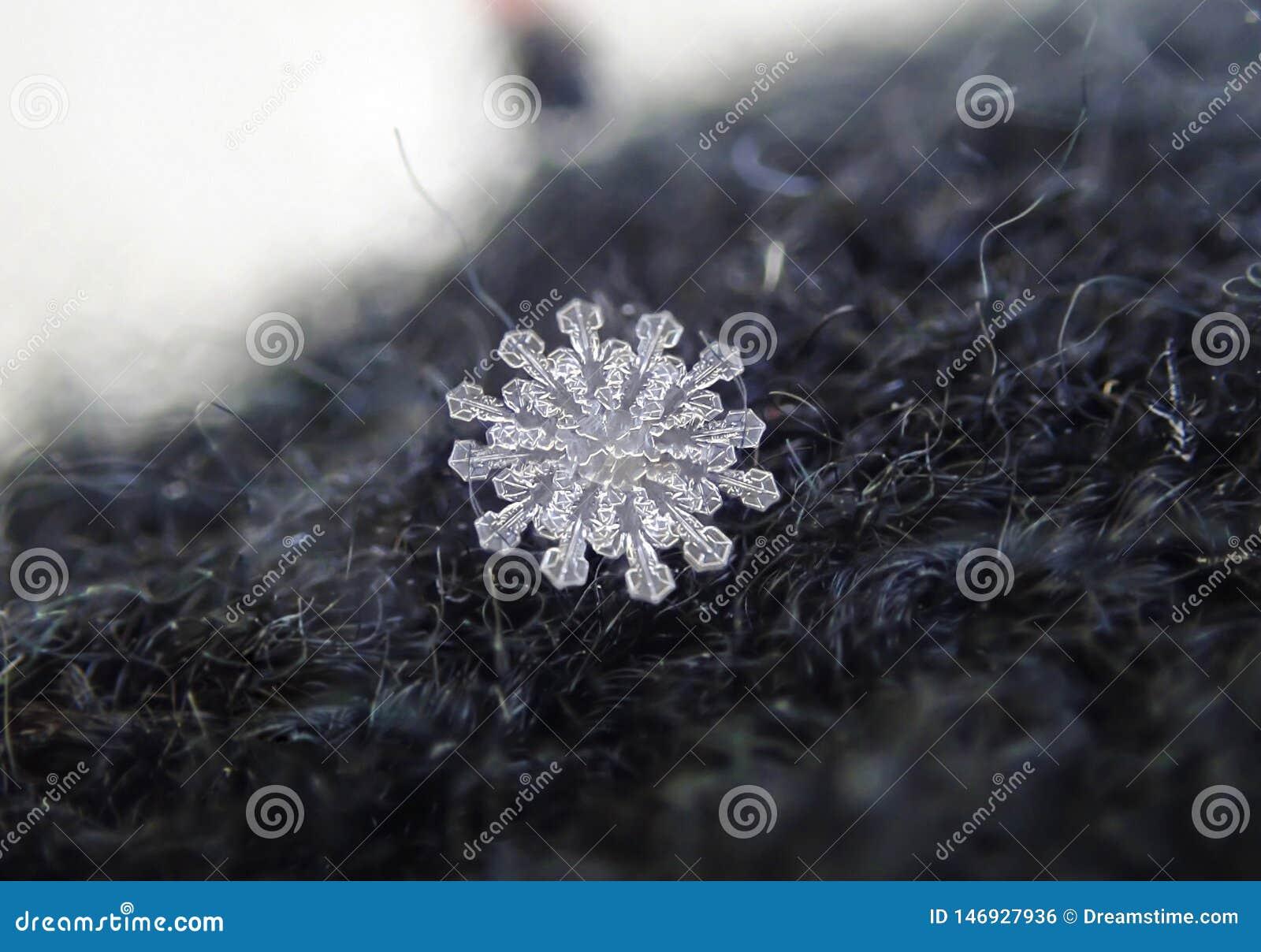 Janvier 12 rares - flocons de neige d?grossis