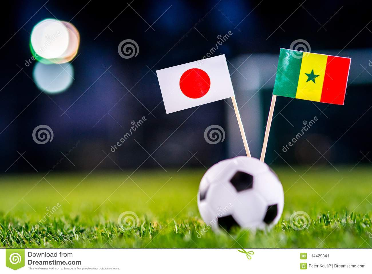 Japan - Senegal, Group H, Sunday, 24. June, Football, World Cup, Russia 2018, National Flags on green grass, white football ball
