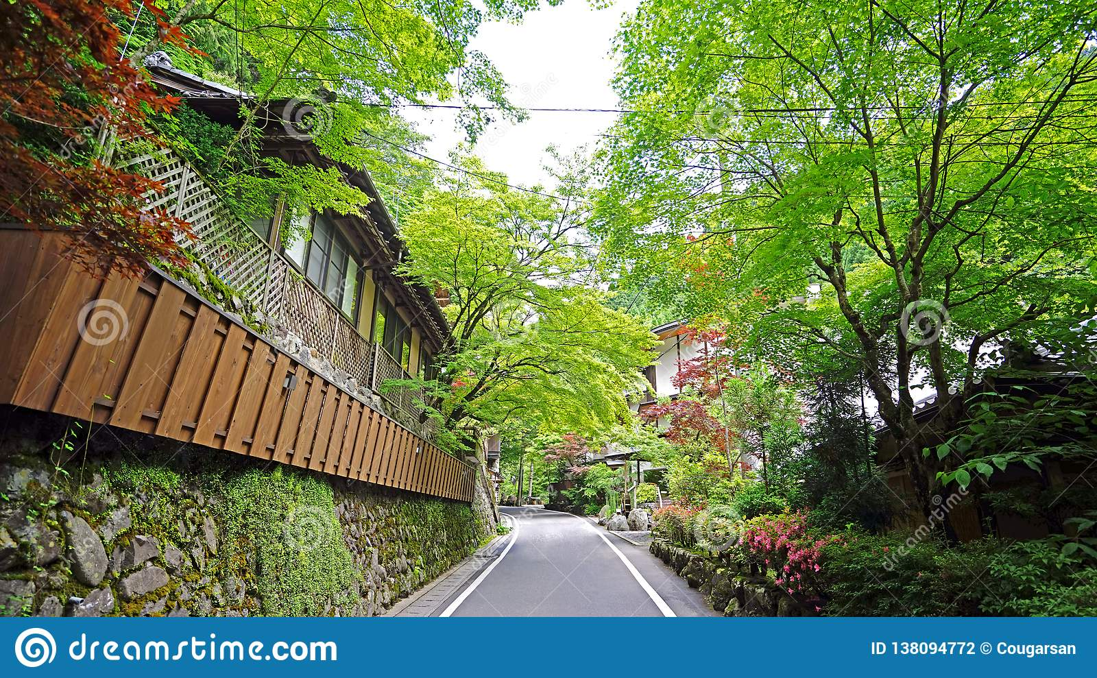 Japan Traditional Building, Zen Garden, Village Footpath, Green Plants