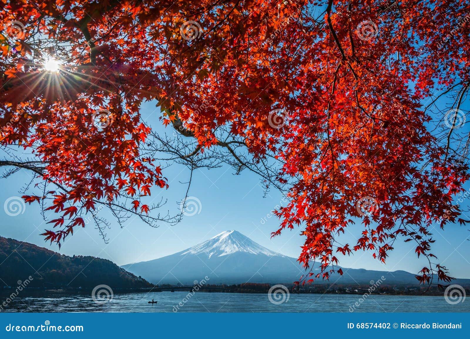 Japan zet het Meer Autumn Postcard View van Fuji en Kawaguchiko-met Esdoorn op de Rode Kleur doorbladert