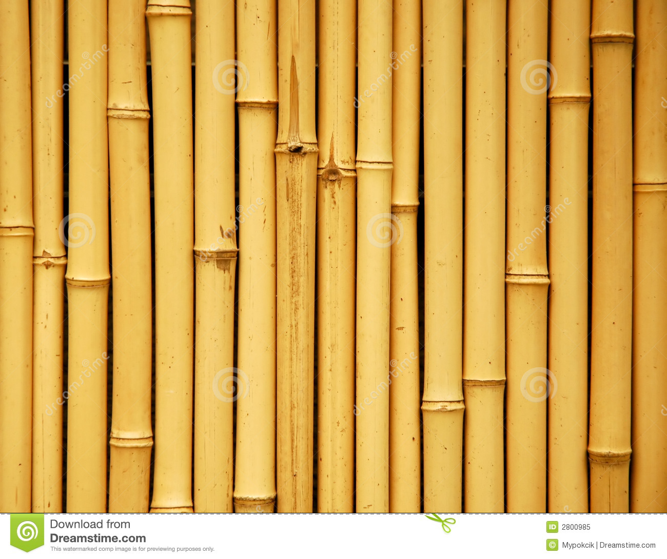 Japanese Bamboo Background Stock Image Image Of Asia