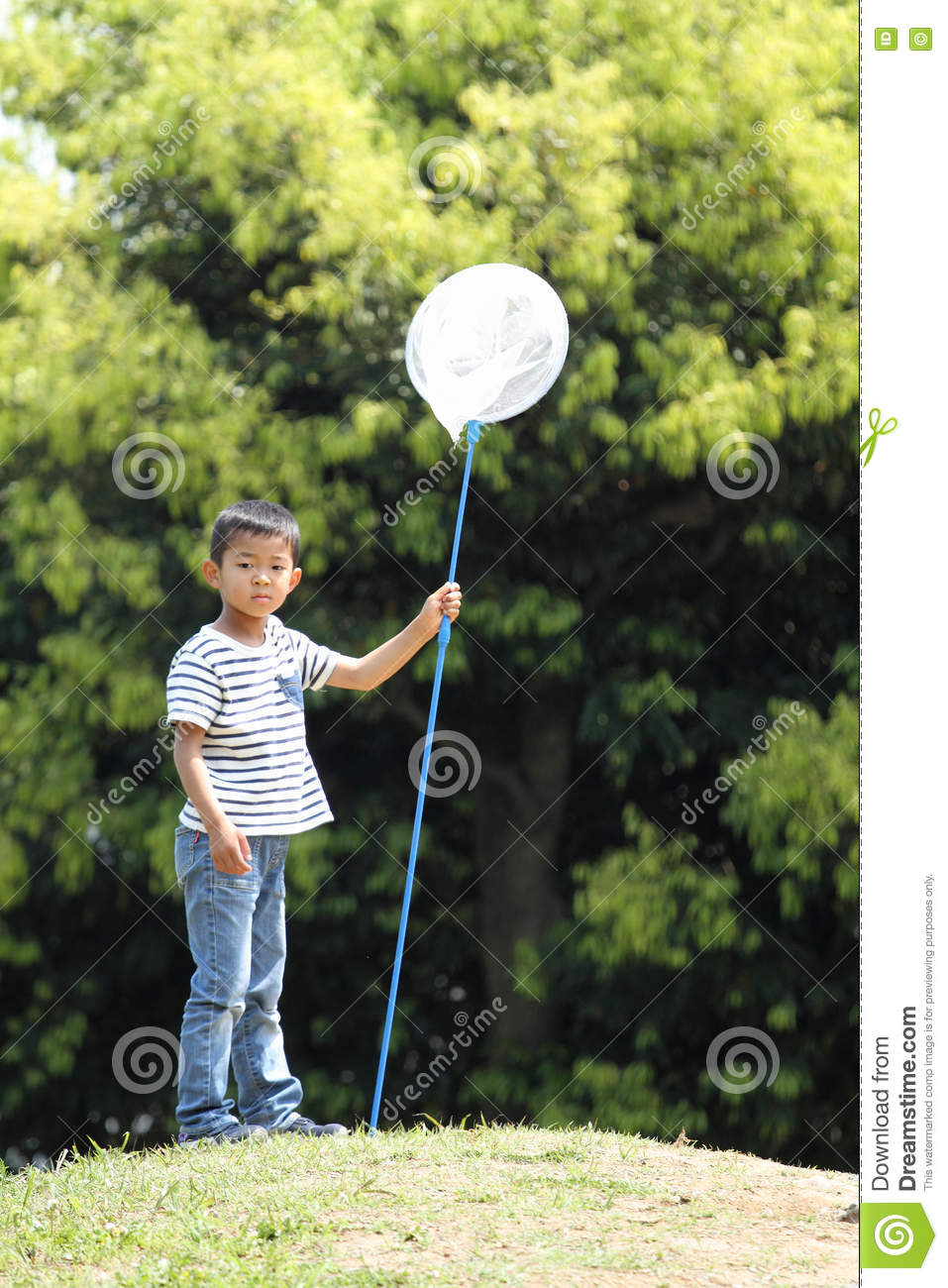 Japanese boy collecting insect