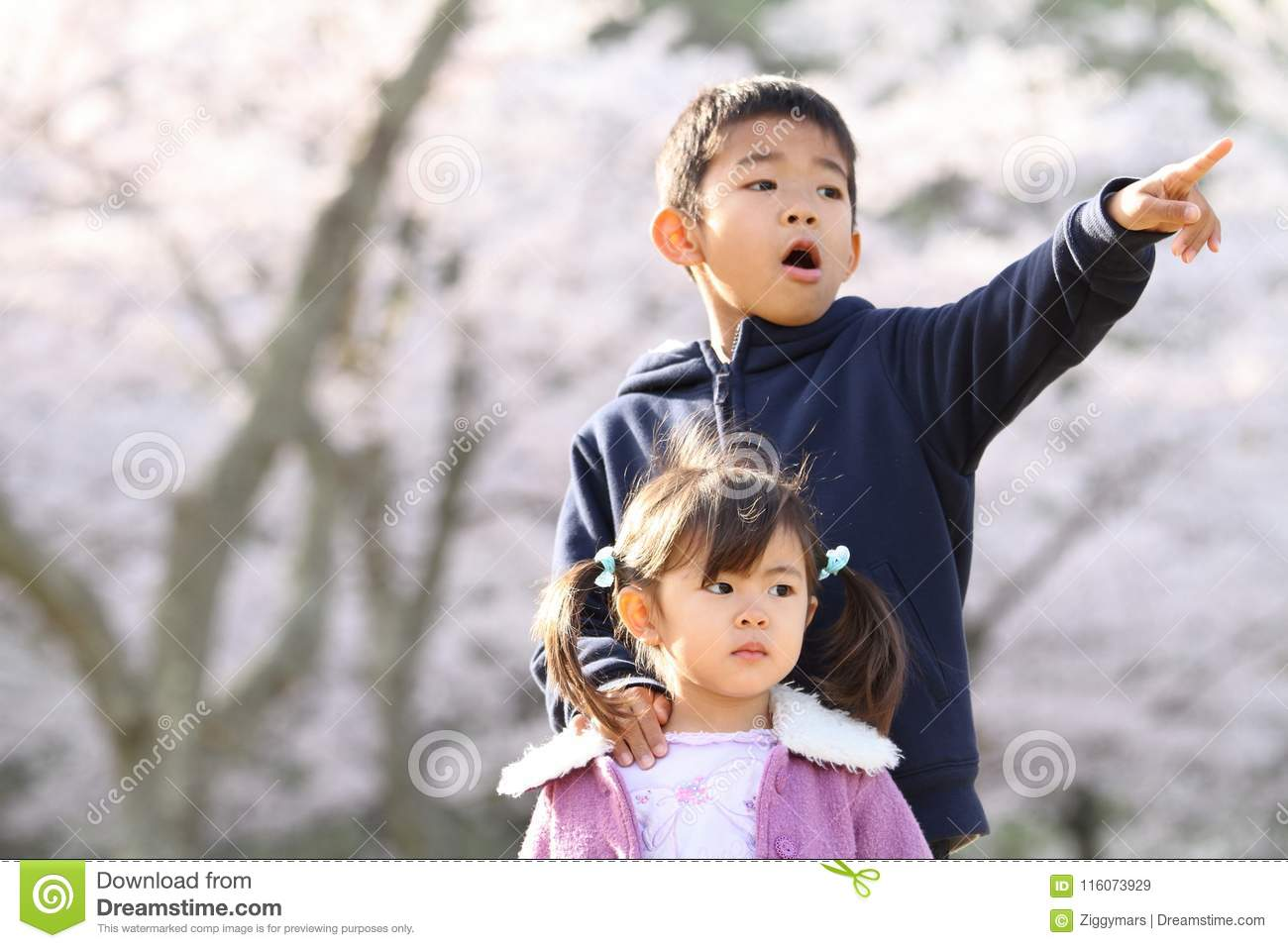 Brother And Sister In Japanese