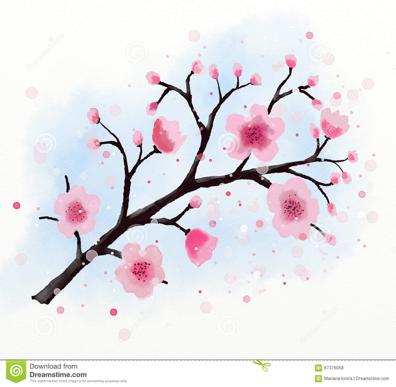 japanese cherry tree blossom watercolor stock photo illustration of decoration  hand 67376058 cherry blossom vector design cherry blossom vector free download