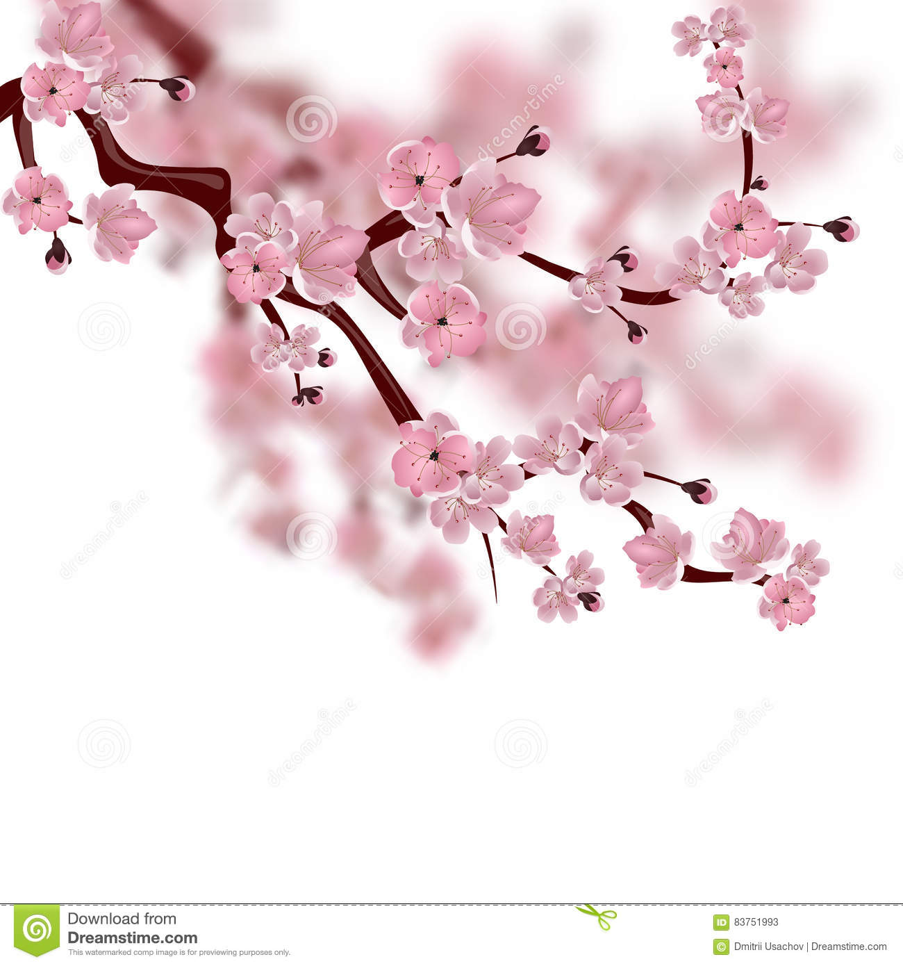 Japanese cherry tree a branch of pink sakura blossom isolated on background blossom branch cherry illustration isolated japanese pink sakura dhlflorist Images