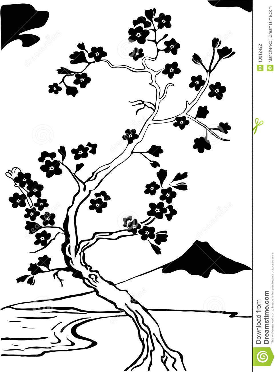 Japanese Cherry Tree Sakura Stock Vector Illustration