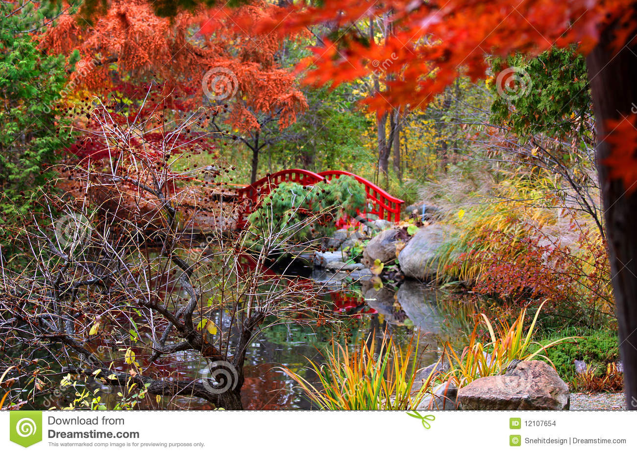 Japanese garden stock images image 12107654 for Japanese garden colors