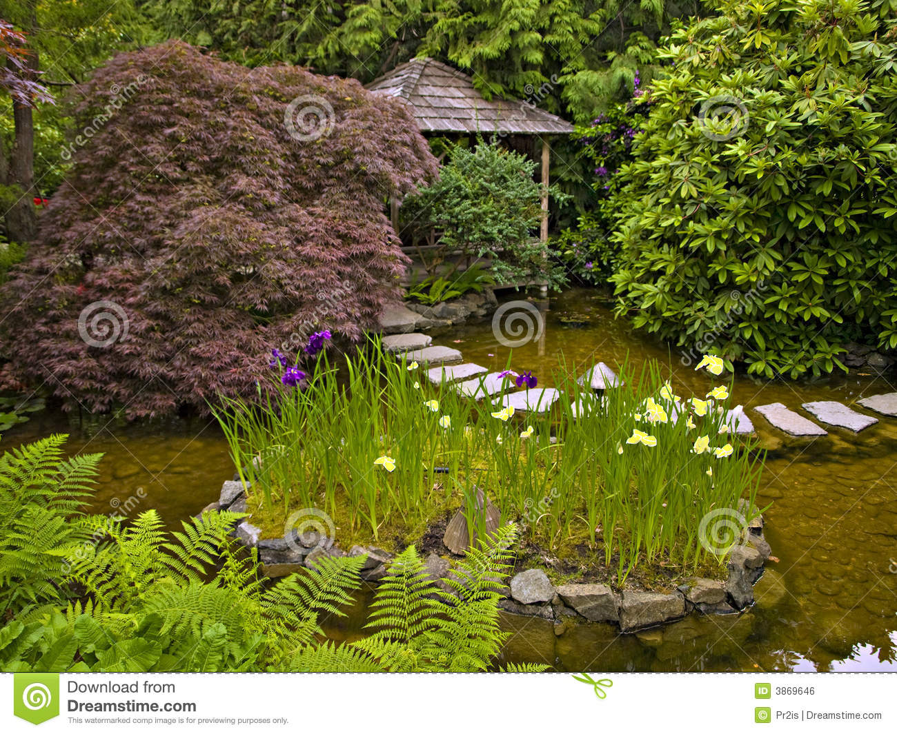 Japanese garden royalty free stock image image 3869646 for Japanese water garden plants