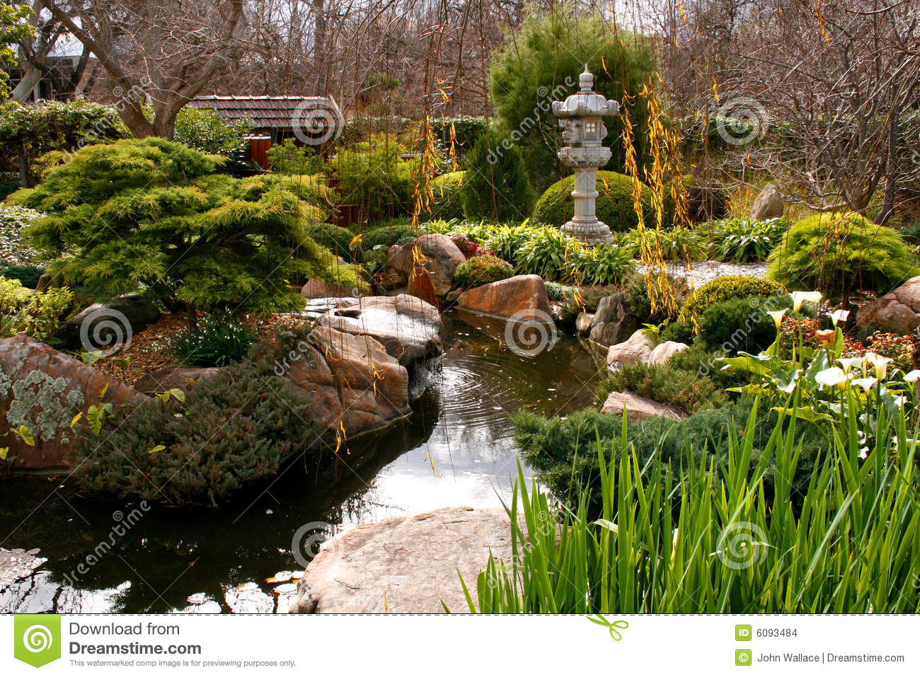 Japanese garden stock images image 6093484 for Japanese garden water feature