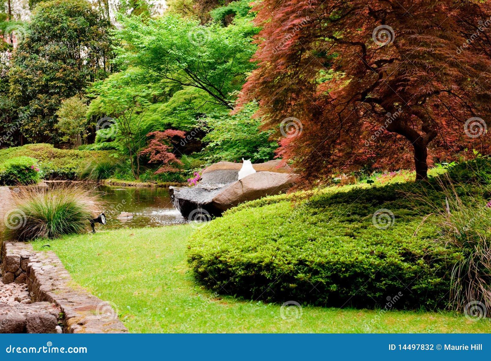 Japanese garden 7 stock photography image 14497832 for Formal japanese garden