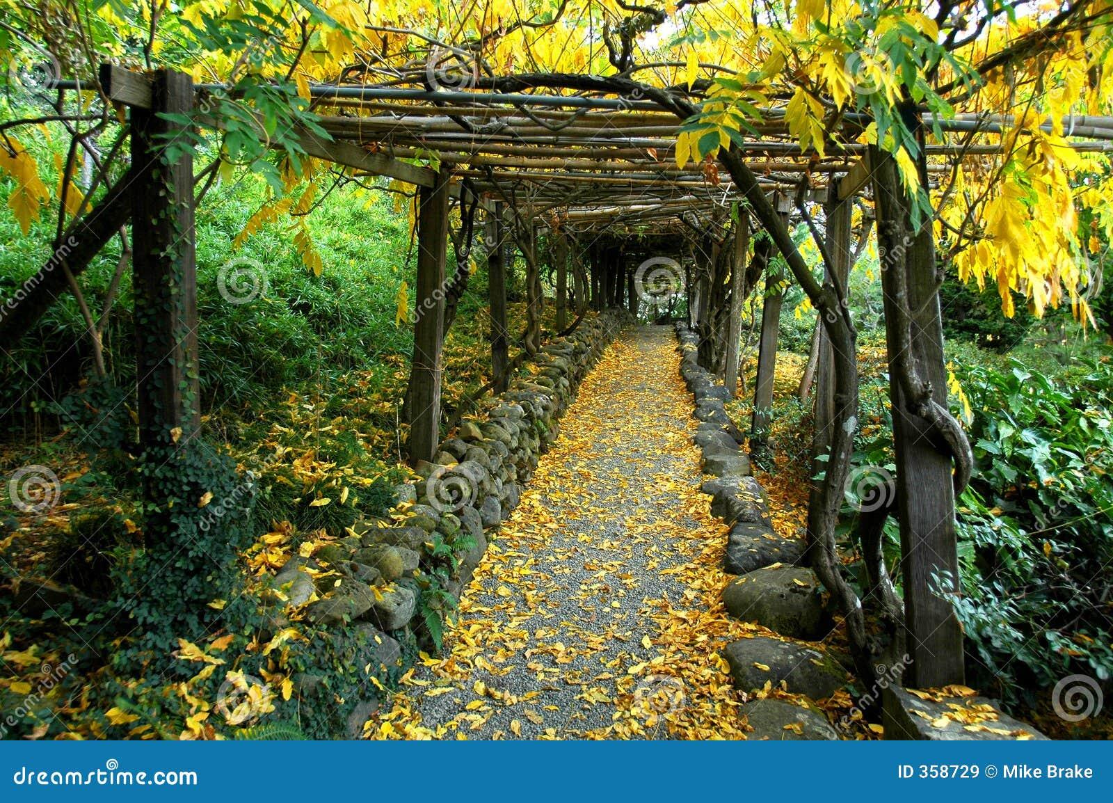 Japanese garden arbor royalty free stock images image for Arbres de jardin