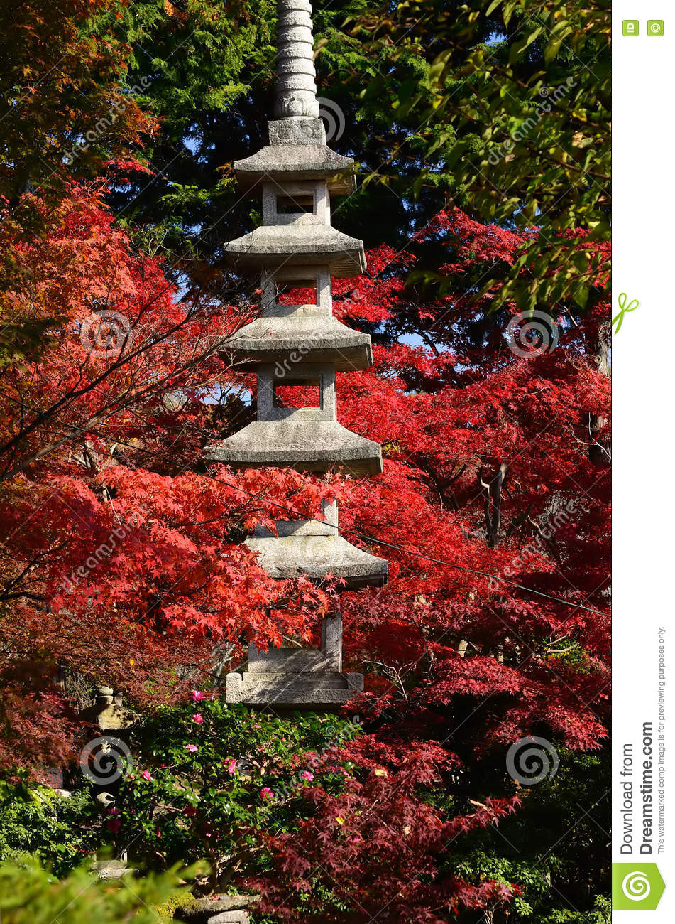 Japanese garden and autumn leaves kyoto japan stock photo for Japanese garden colors