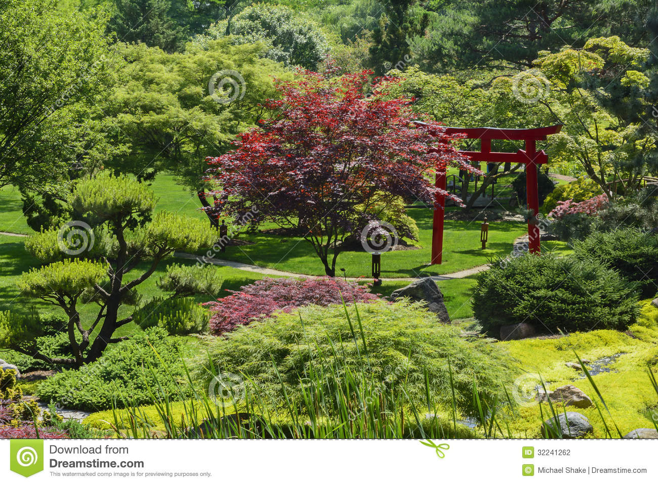 Japanese garden stock photography image 32241262 for Japanese trees for landscaping