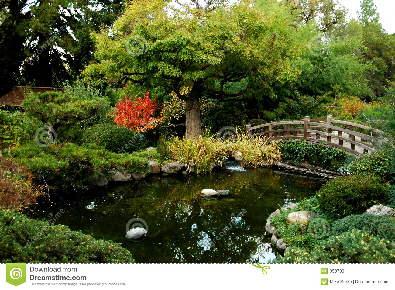 Japanese garden bridge stock photos image 358733