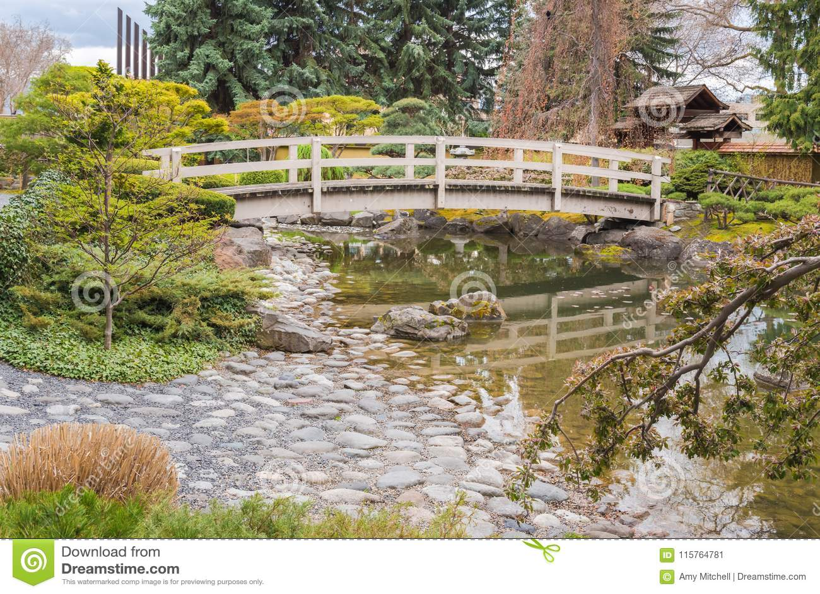 Japanese garden with bridge and koi pond in springtime for Koi pond kelowna