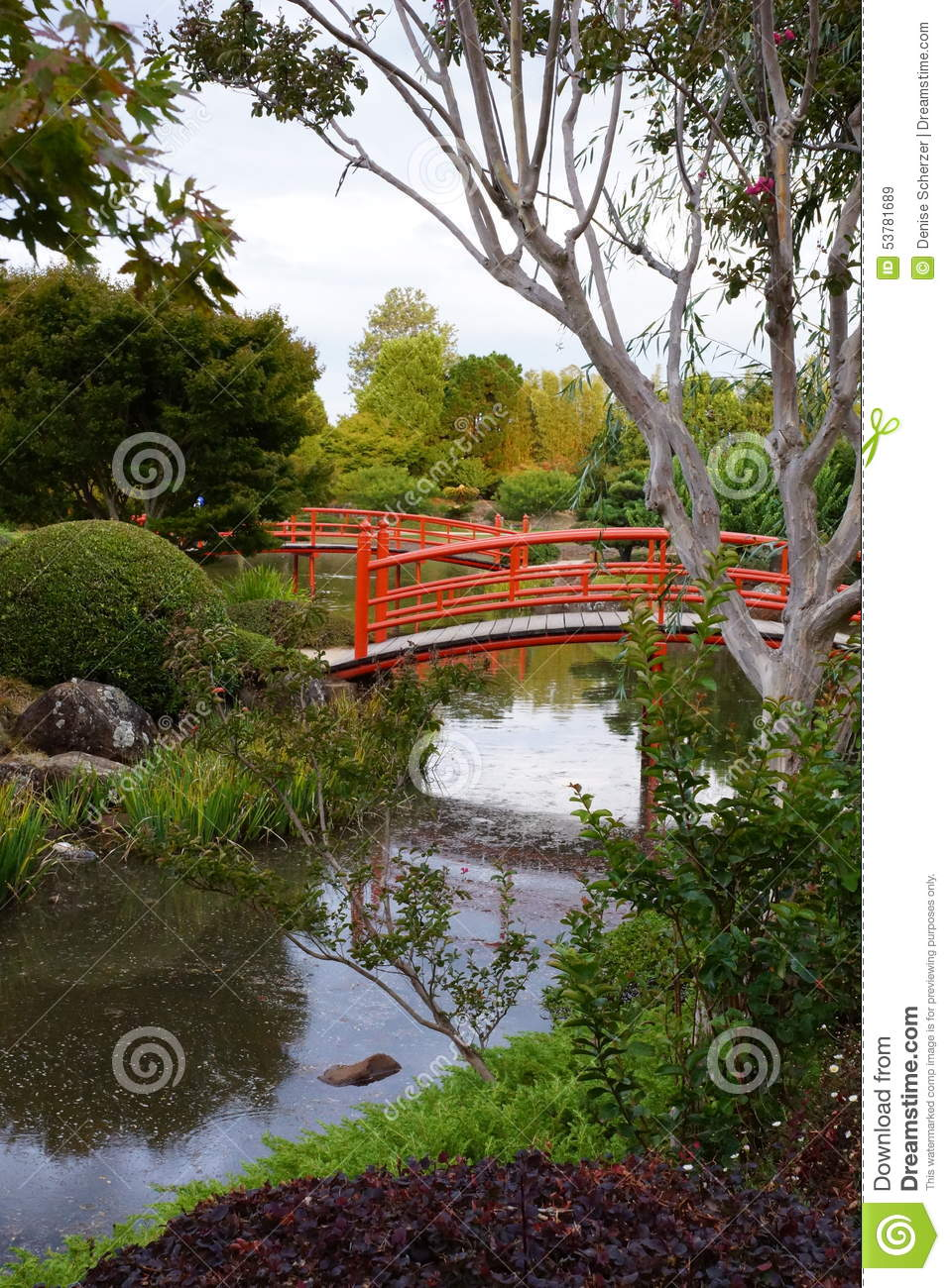 Japanese Garden With Bridges And River Mirrors