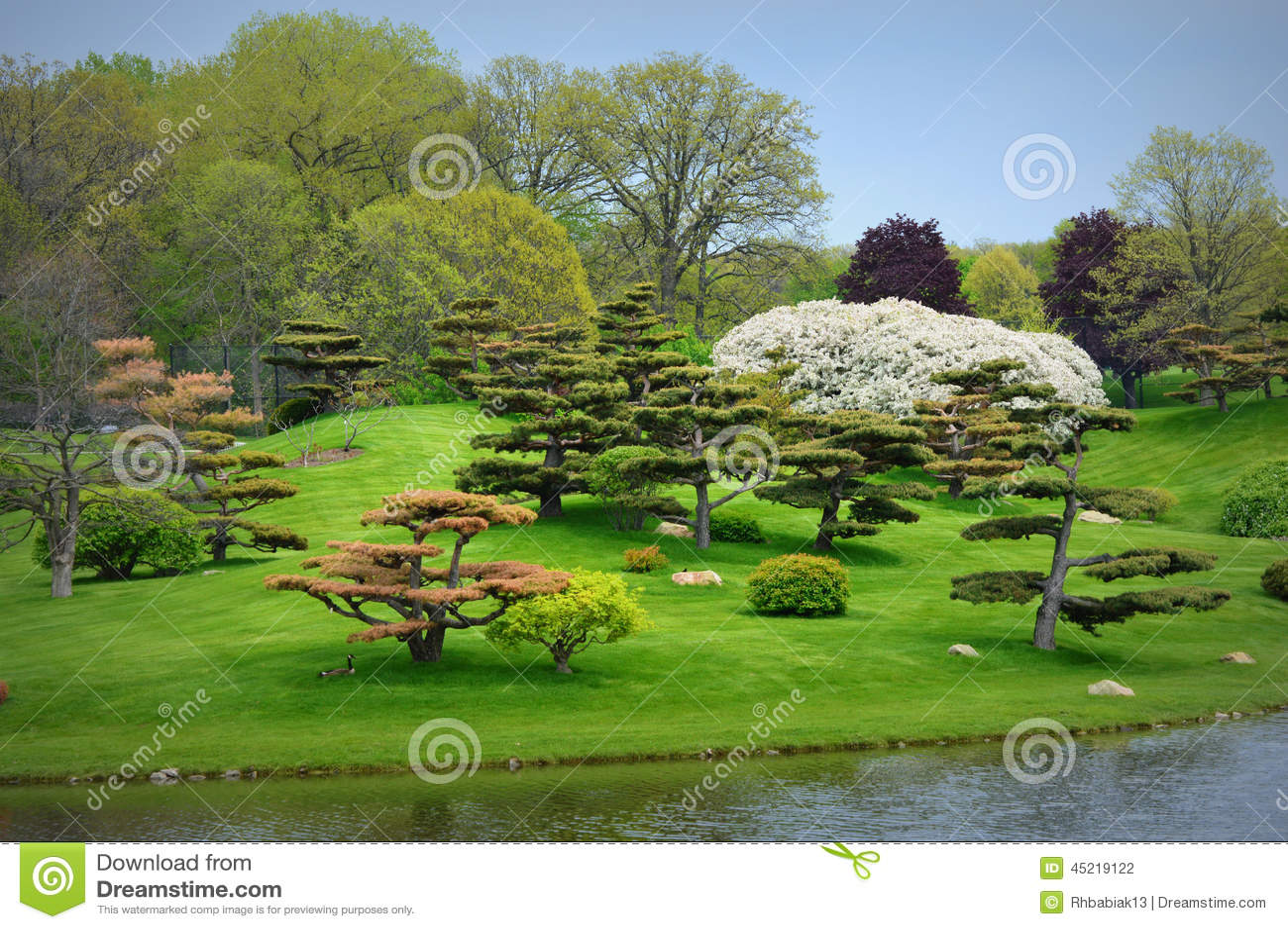 Japanese Garden Stock Photo Image 45219122