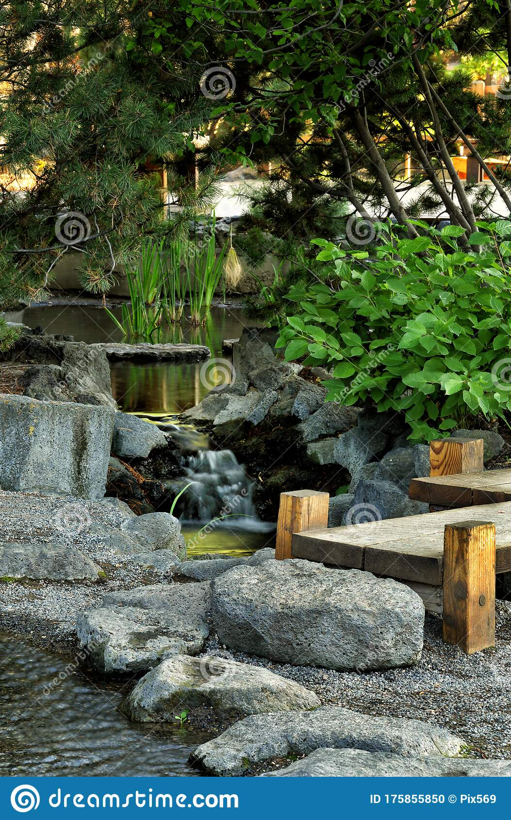 The Japanese Garden In The City Of Idaho Falls Idaho Stock Photo Image Of Garden Cultural 175855850