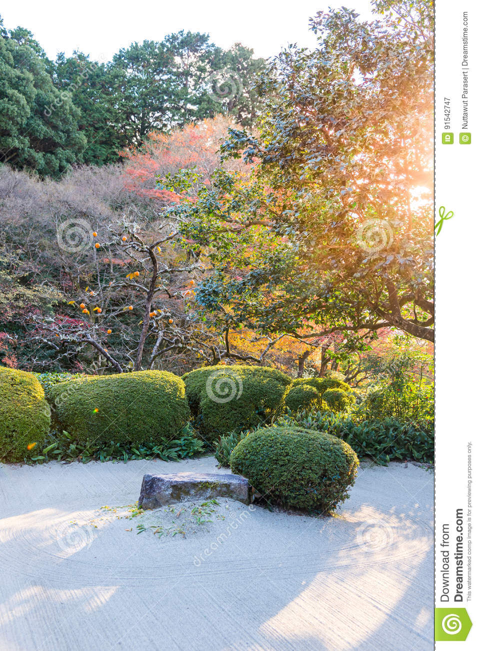 Japanese Garden Decor With Rock And Bush, Draw Lthe Line With G