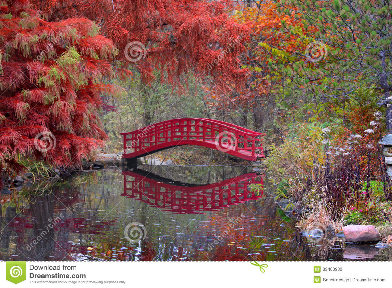 japanese garden in fall stock photo image of orange 33400980. Black Bedroom Furniture Sets. Home Design Ideas